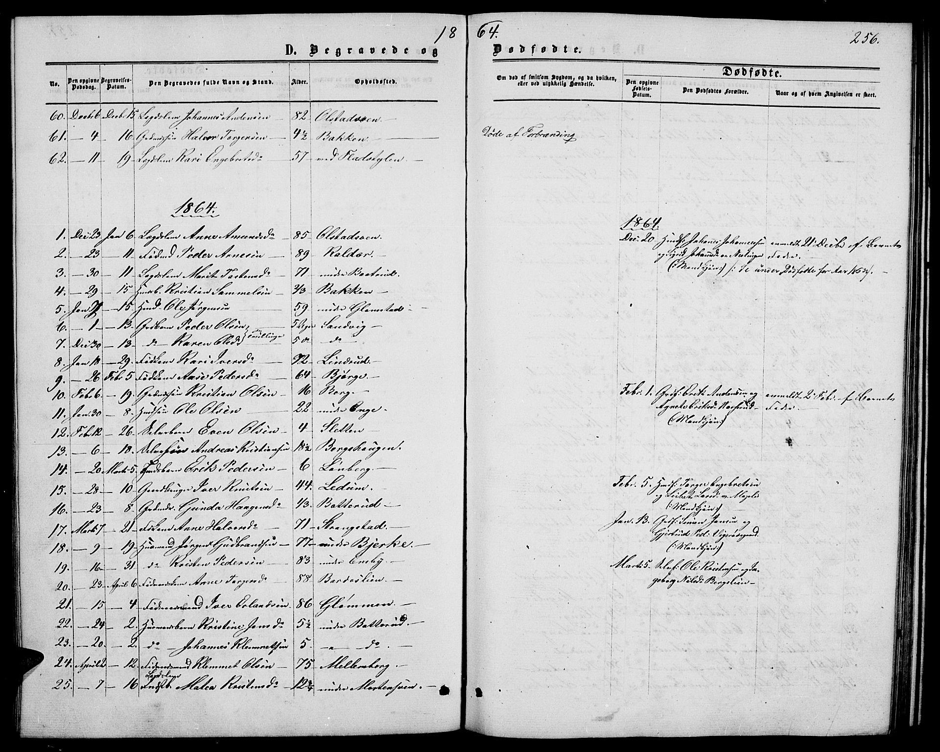 SAH, Øyer prestekontor, Klokkerbok nr. 1, 1863-1877, s. 256