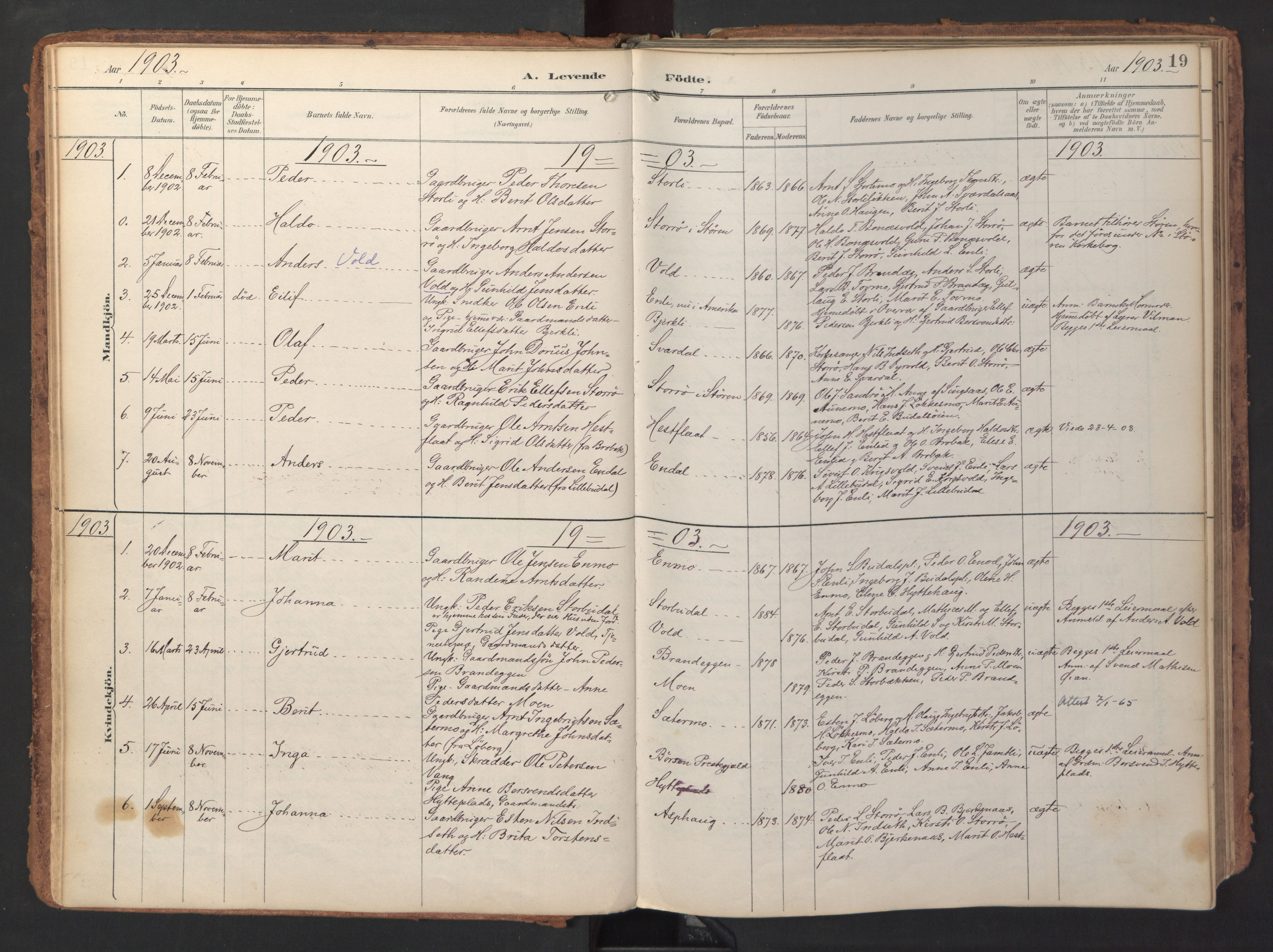 SAT, Ministerialprotokoller, klokkerbøker og fødselsregistre - Sør-Trøndelag, 690/L1050: Ministerialbok nr. 690A01, 1889-1929, s. 19