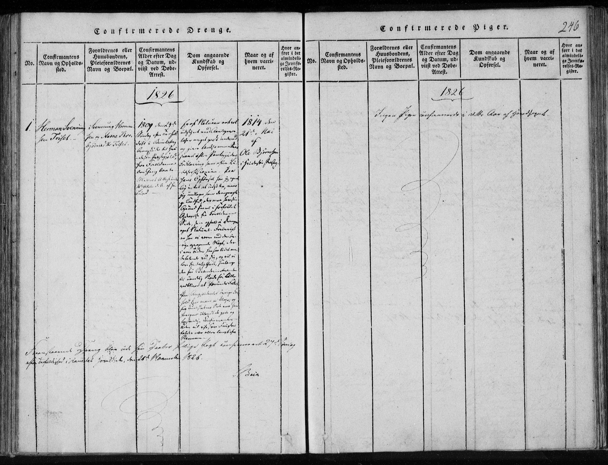 SAKO, Lårdal kirkebøker, F/Fa/L0005: Ministerialbok nr. I 5, 1815-1860, s. 246
