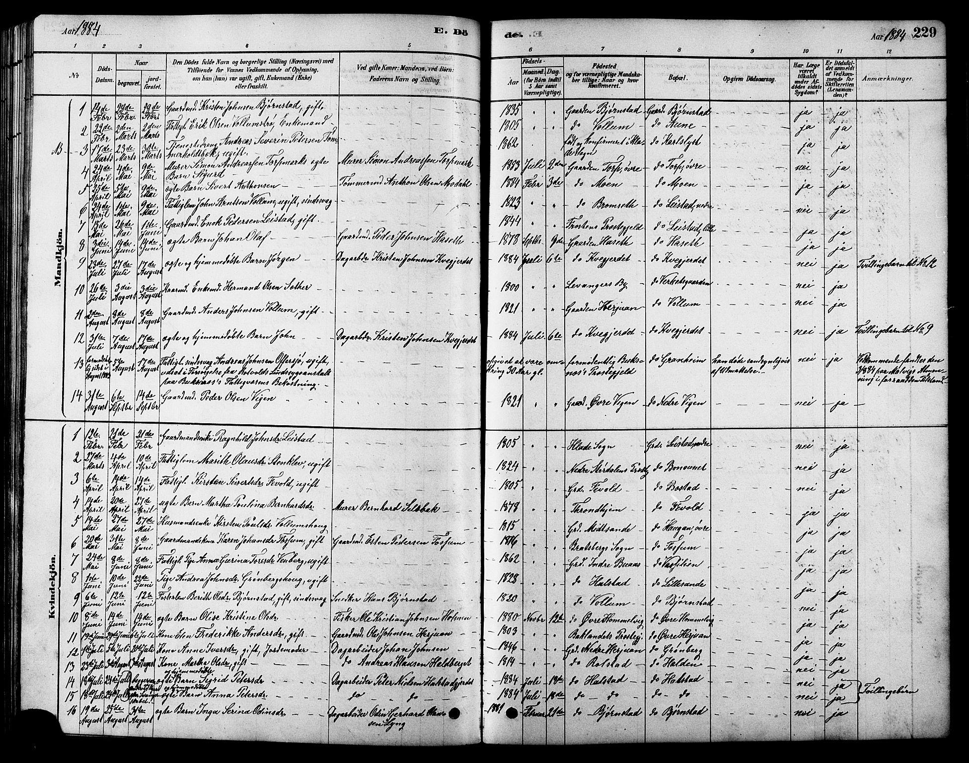 SAT, Ministerialprotokoller, klokkerbøker og fødselsregistre - Sør-Trøndelag, 616/L0423: Klokkerbok nr. 616C06, 1878-1903, s. 229