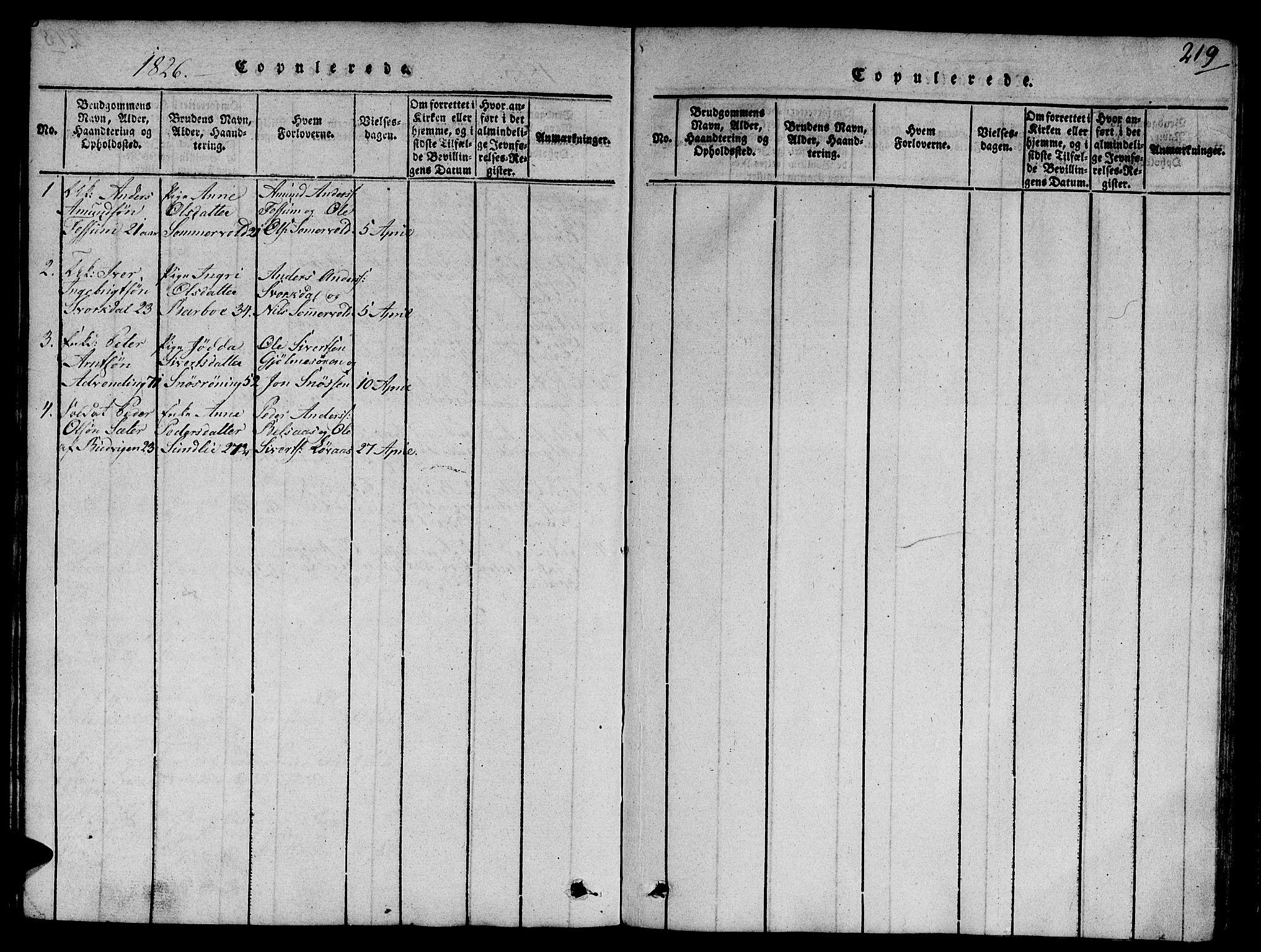 SAT, Ministerialprotokoller, klokkerbøker og fødselsregistre - Sør-Trøndelag, 668/L0803: Ministerialbok nr. 668A03, 1800-1826, s. 219