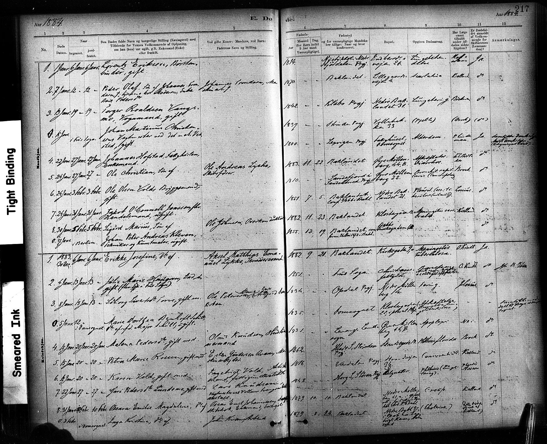 SAT, Ministerialprotokoller, klokkerbøker og fødselsregistre - Sør-Trøndelag, 604/L0189: Ministerialbok nr. 604A10, 1878-1892, s. 217