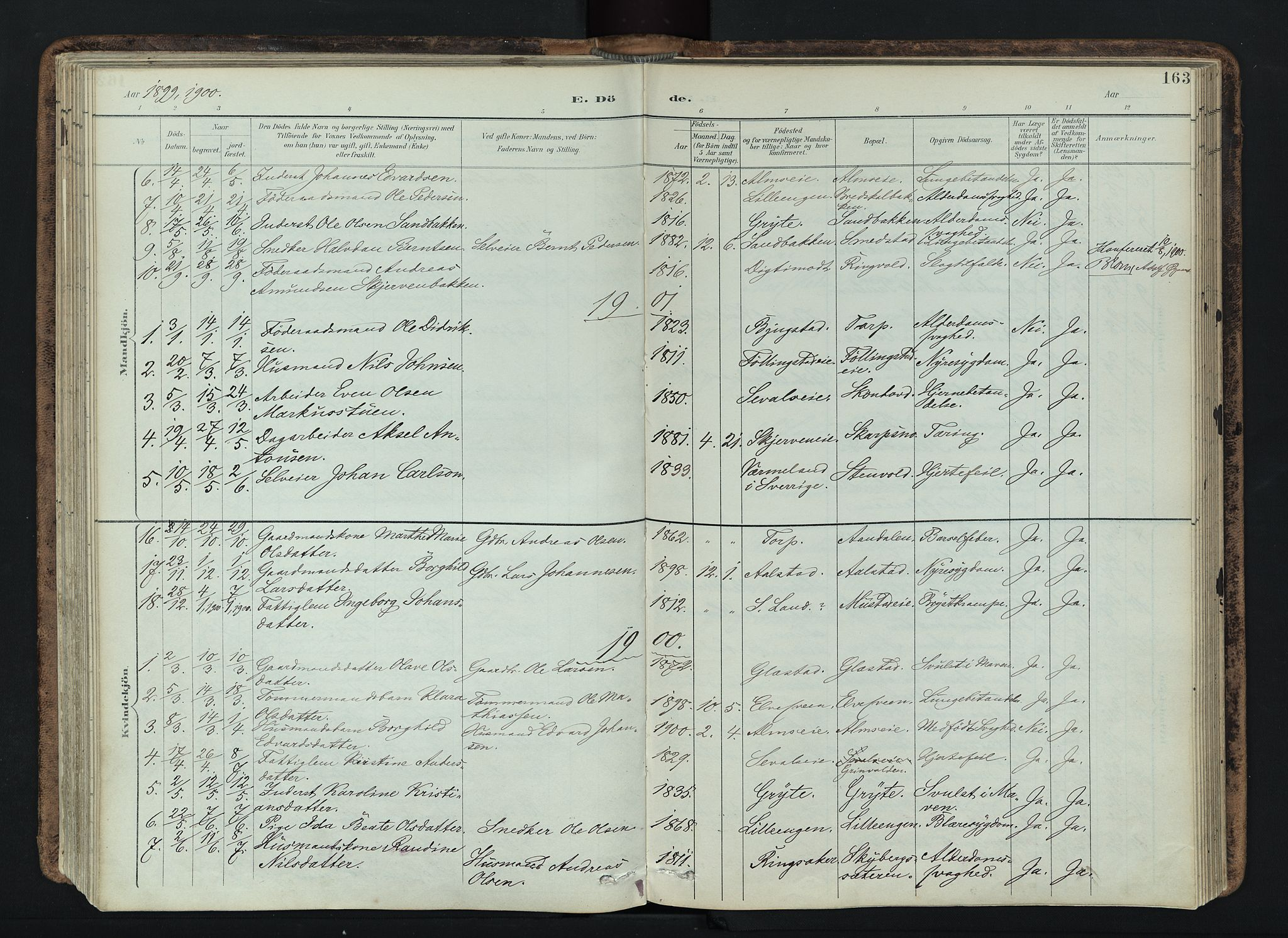 SAH, Vardal prestekontor, H/Ha/Haa/L0019: Ministerialbok nr. 19, 1893-1907, s. 163