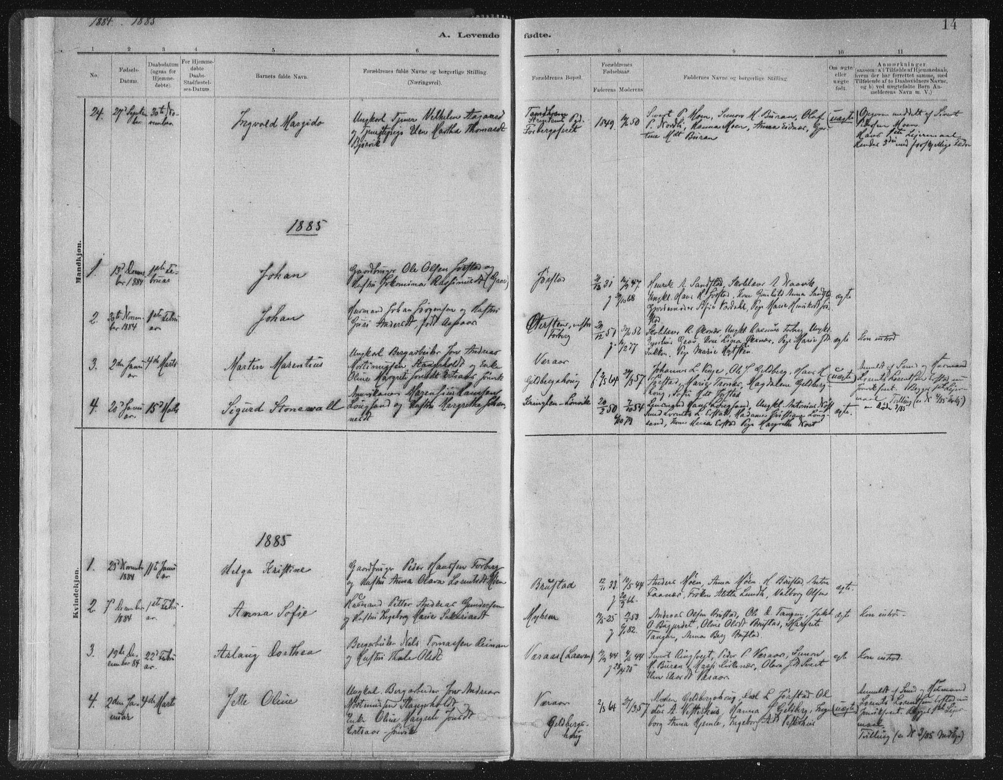 SAT, Ministerialprotokoller, klokkerbøker og fødselsregistre - Nord-Trøndelag, 722/L0220: Ministerialbok nr. 722A07, 1881-1908, s. 14