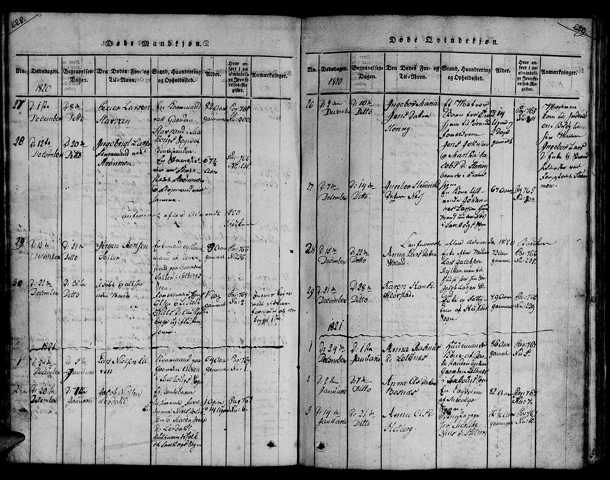 SAT, Ministerialprotokoller, klokkerbøker og fødselsregistre - Nord-Trøndelag, 730/L0275: Ministerialbok nr. 730A04, 1816-1822, s. 228-229