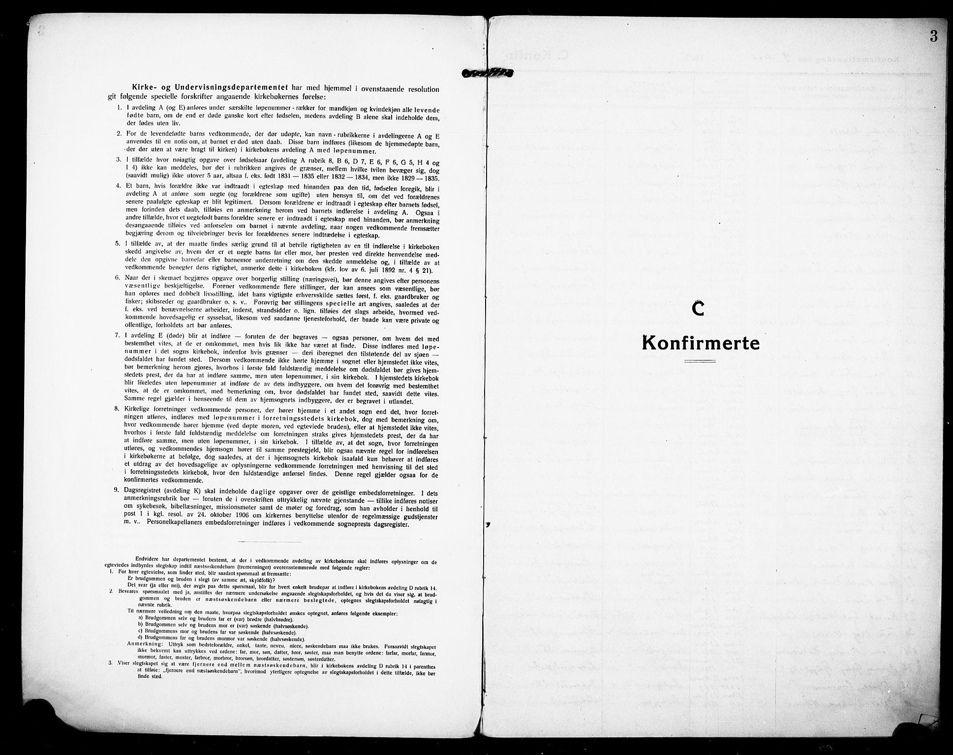 SAKO, Sandefjord kirkebøker, F/Fa/L0006: Ministerialbok nr. 6, 1915-1930, s. 3