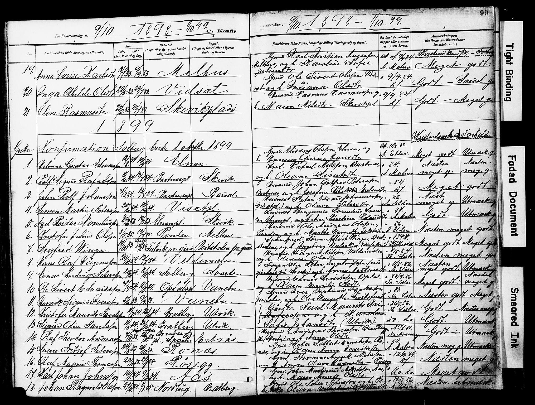 SAT, Ministerialprotokoller, klokkerbøker og fødselsregistre - Nord-Trøndelag, 741/L0396: Ministerialbok nr. 741A10, 1889-1901, s. 99