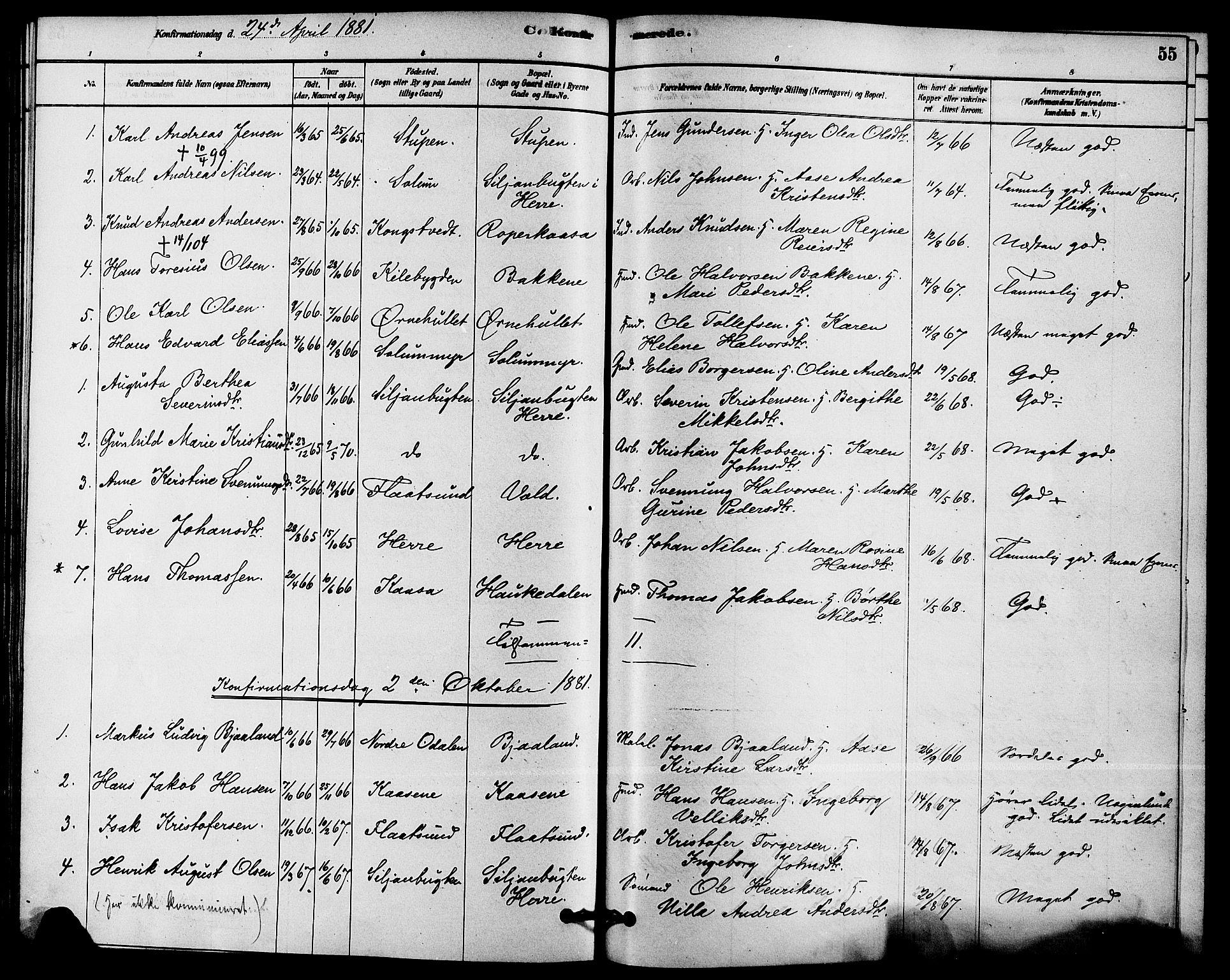 SAKO, Solum kirkebøker, F/Fc/L0001: Ministerialbok nr. III 1, 1877-1891, s. 55