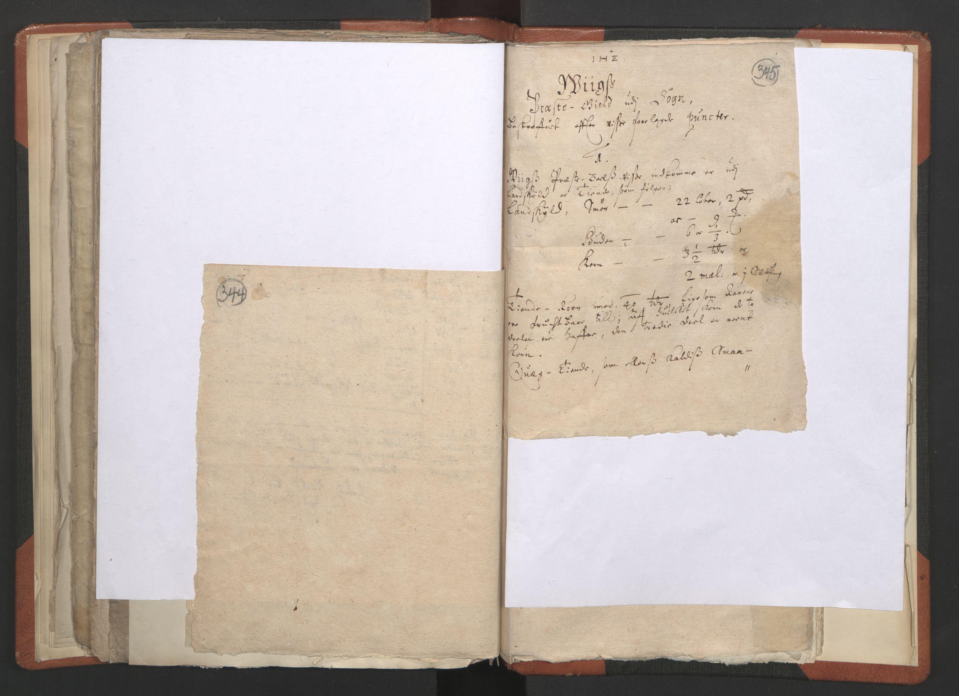 RA, Sogneprestenes manntall 1664-1666, nr. 23: Sogn prosti, 1664-1666, s. 344-345