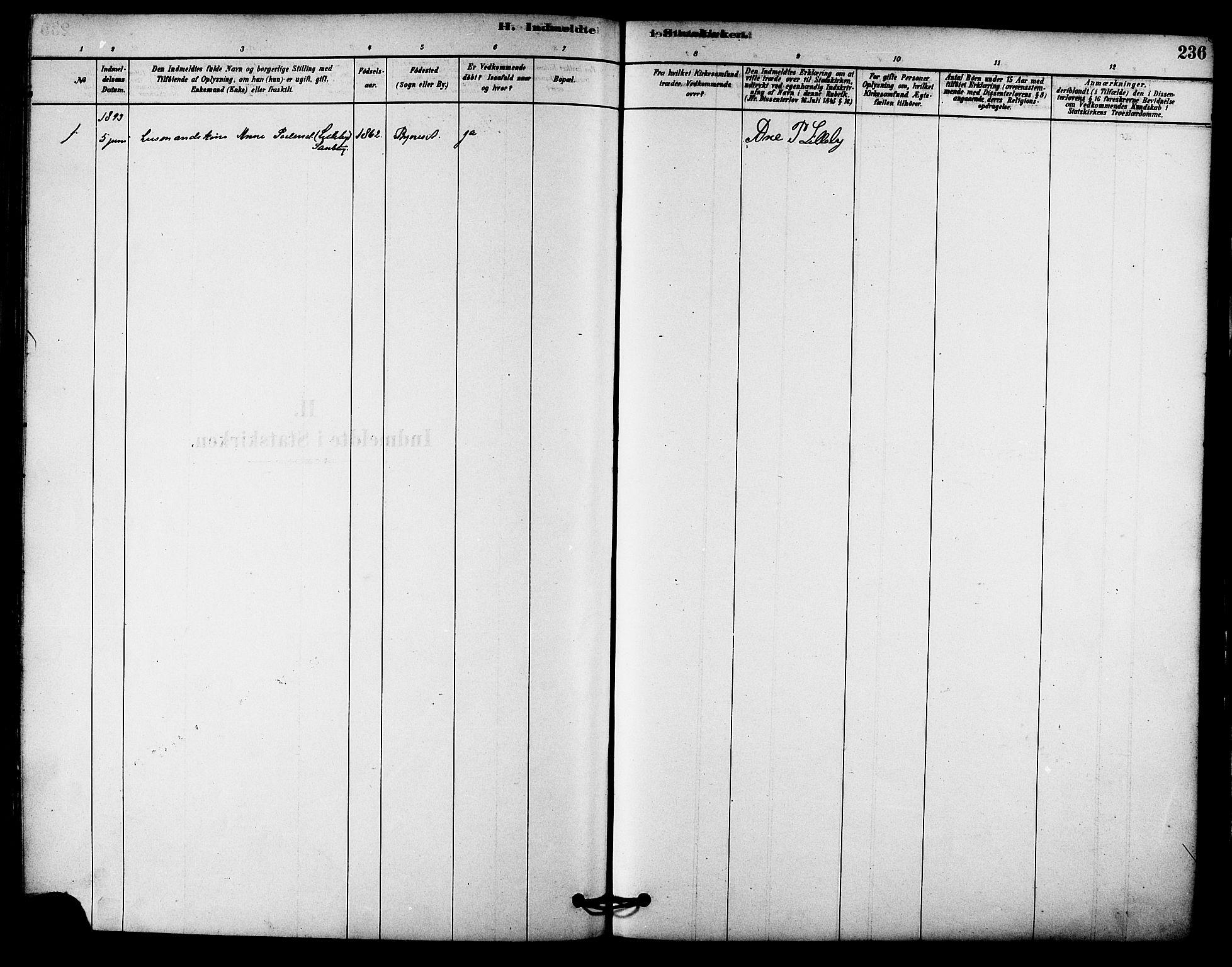 SAT, Ministerialprotokoller, klokkerbøker og fødselsregistre - Sør-Trøndelag, 612/L0378: Ministerialbok nr. 612A10, 1878-1897, s. 236