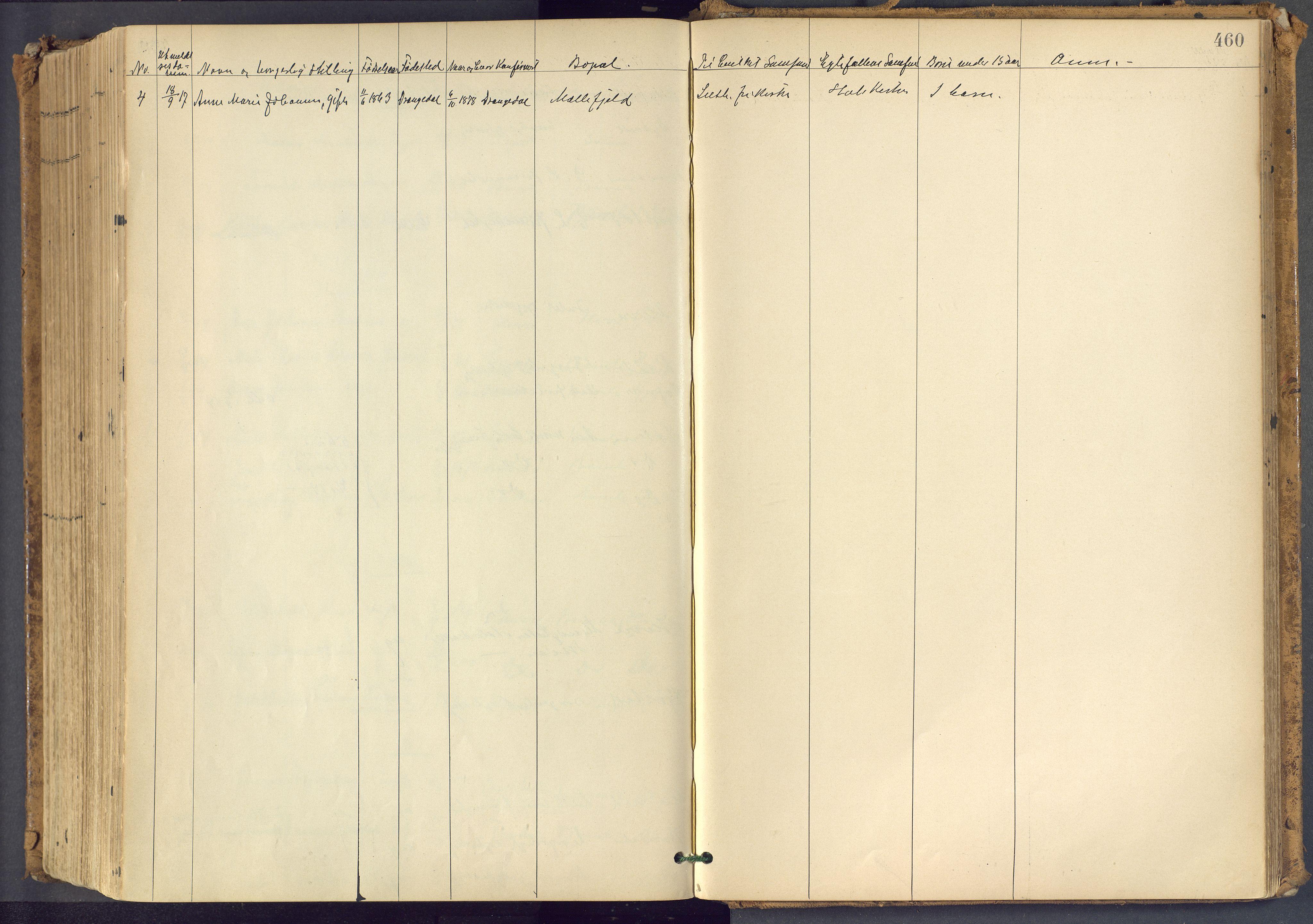 SAKO, Bamble kirkebøker, F/Fa/L0009: Ministerialbok nr. I 9, 1901-1917, s. 460