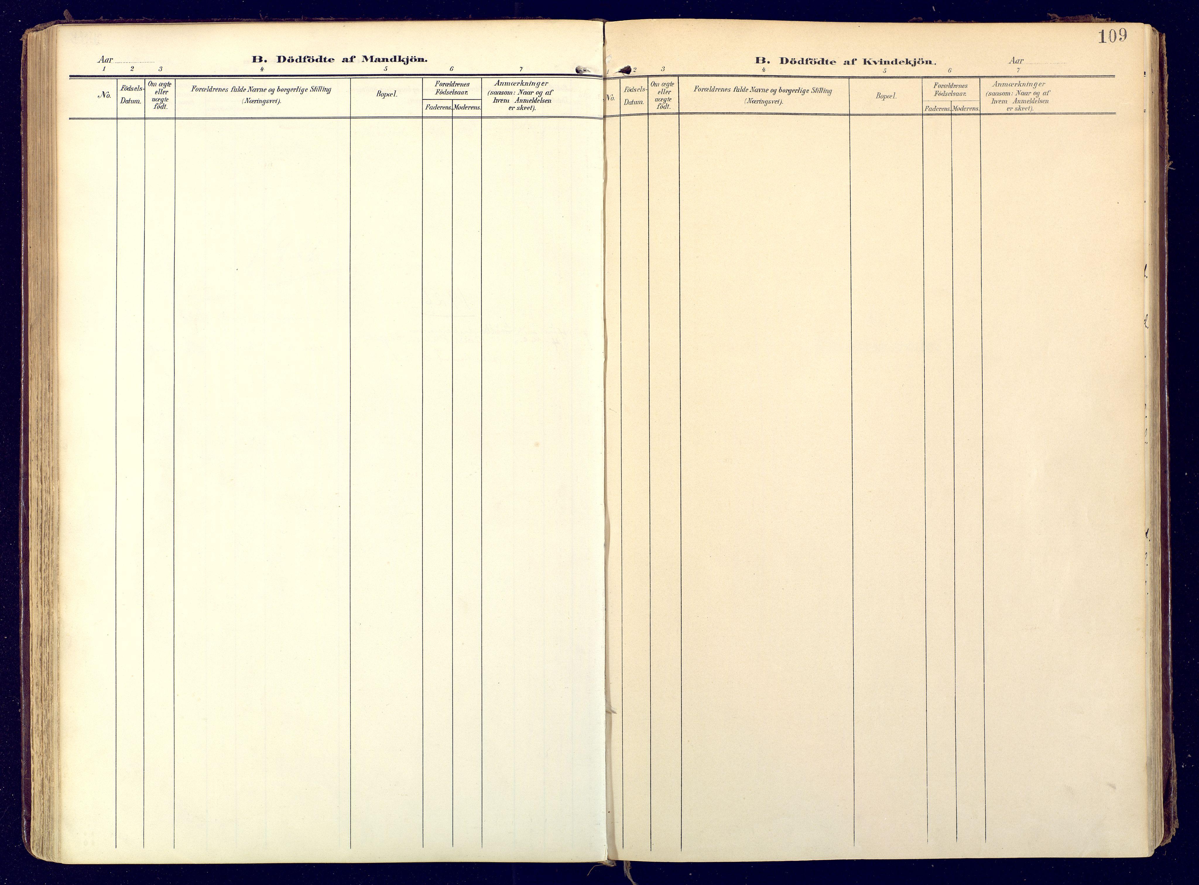 SATØ, Karasjok sokneprestkontor, H/Ha: Ministerialbok nr. 3, 1907-1926, s. 109