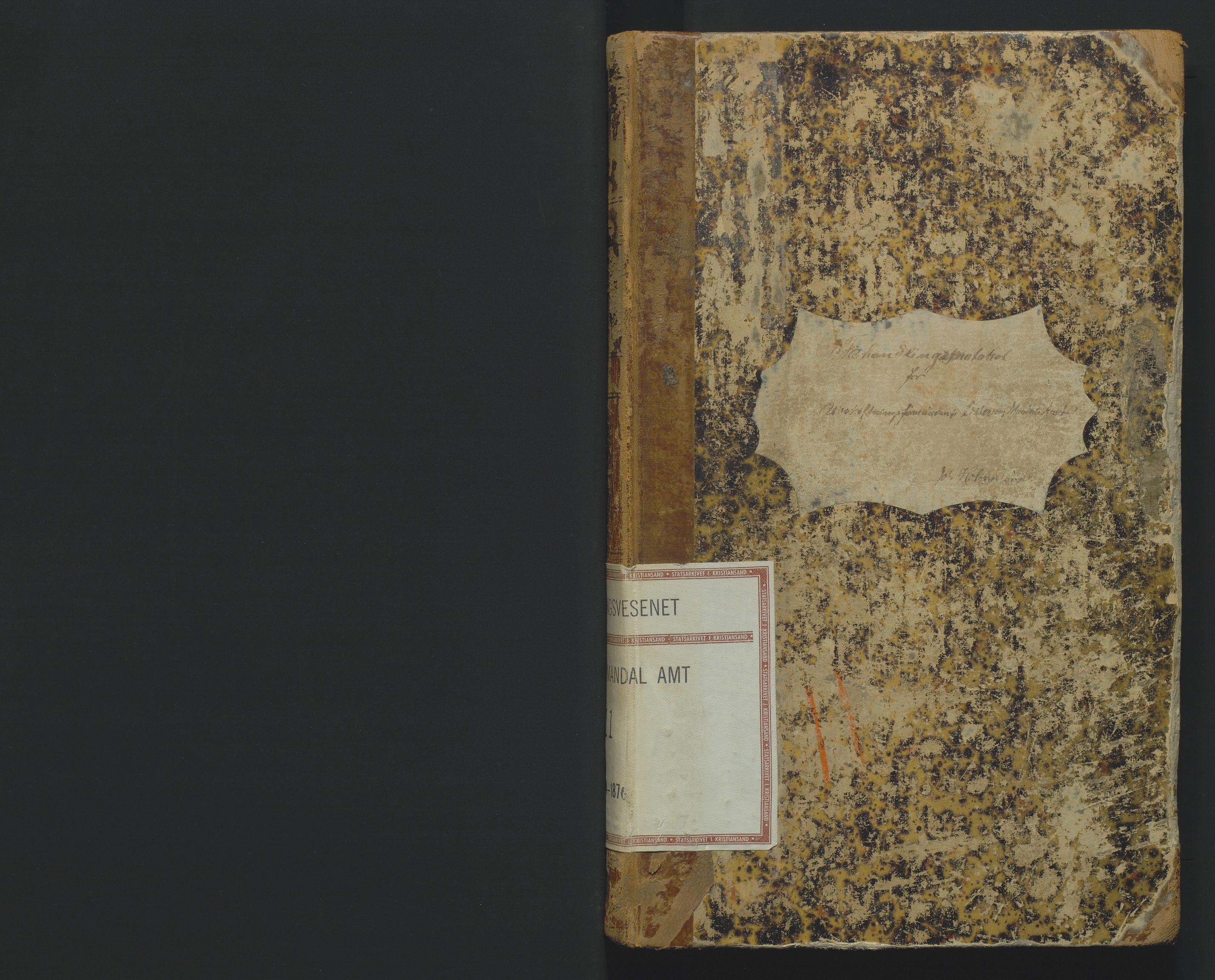 SAK, Utskiftningsformannen i Lister og Mandal amt, F/Fa/Faa/L0011: Utskiftningsprotokoll med register nr 11, 1874-1876