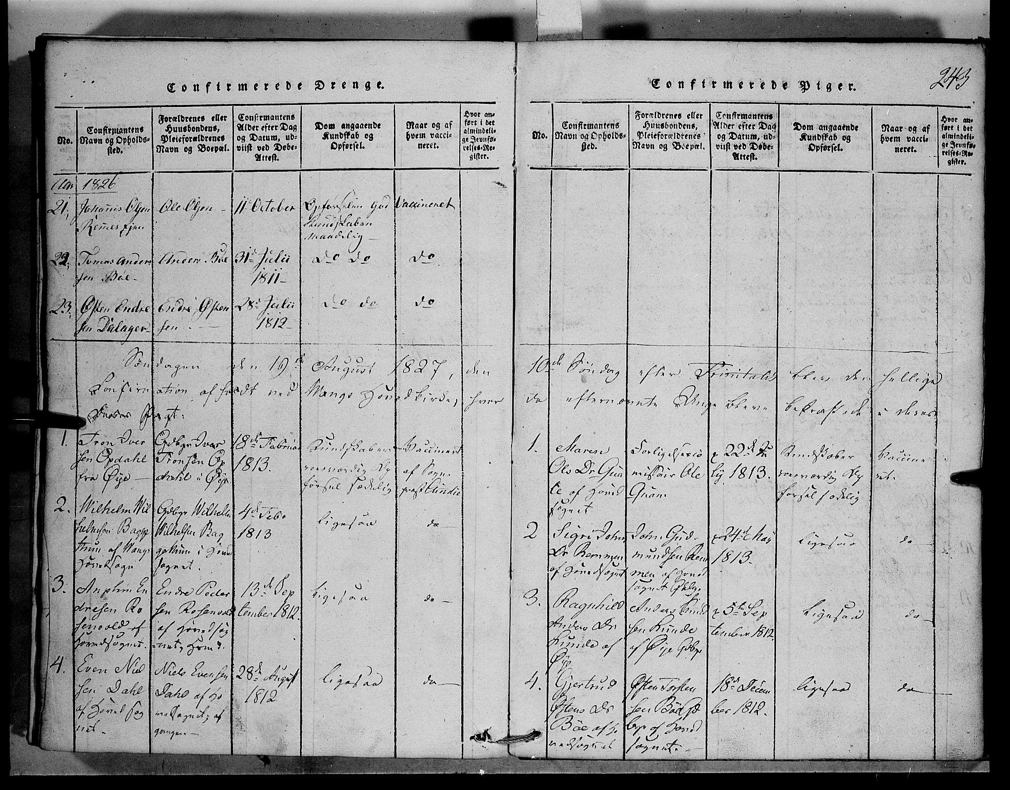 SAH, Vang prestekontor, Valdres, Klokkerbok nr. 1, 1814-1820, s. 243