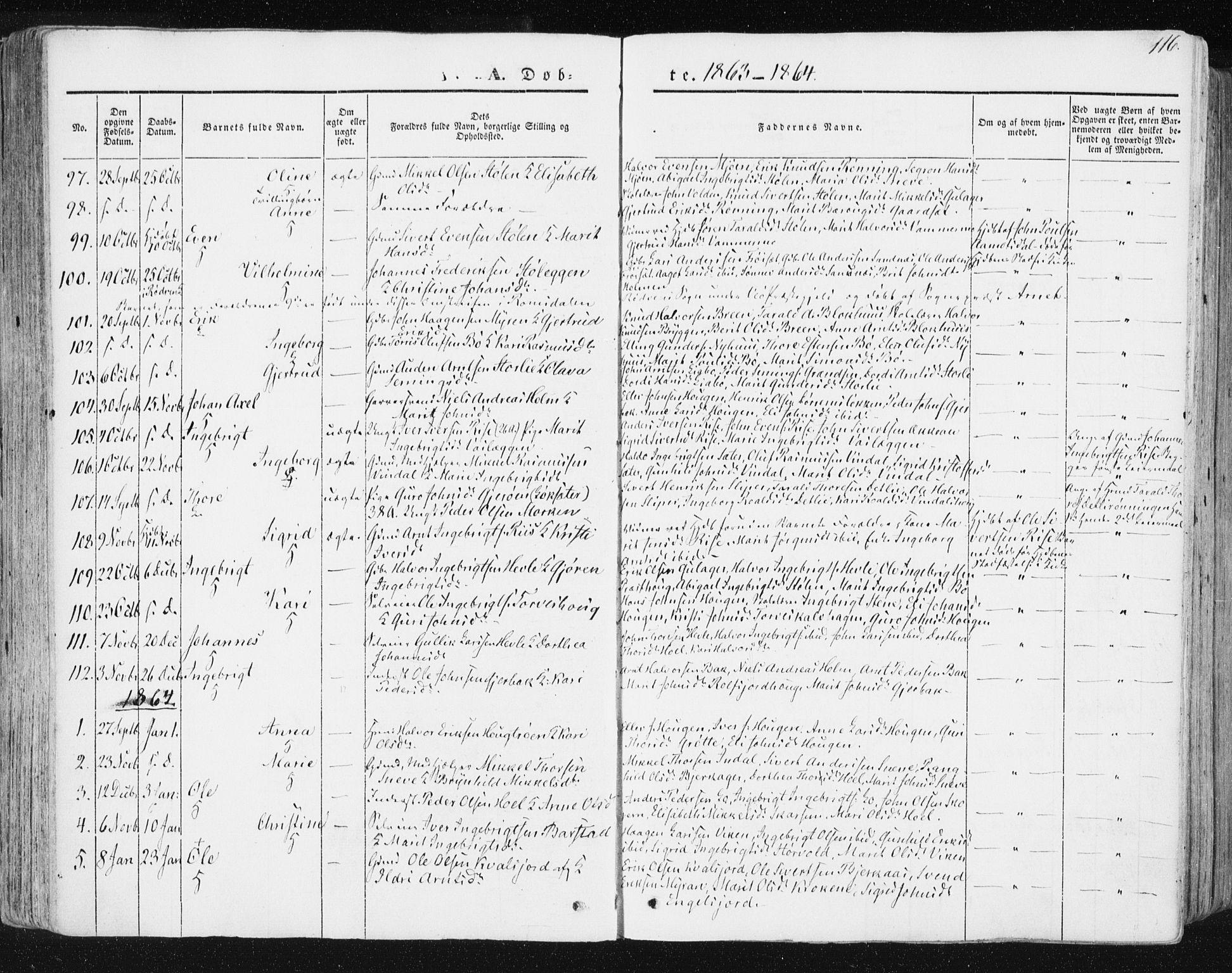 SAT, Ministerialprotokoller, klokkerbøker og fødselsregistre - Sør-Trøndelag, 678/L0899: Ministerialbok nr. 678A08, 1848-1872, s. 116