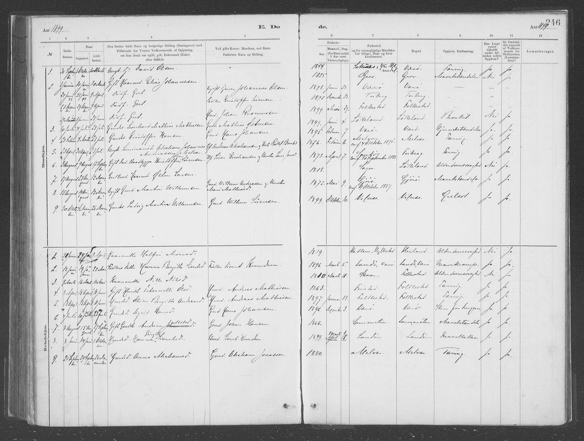 SAB, Askvoll Sokneprestembete, Ministerialbok nr. C  1, 1879-1922, s. 246