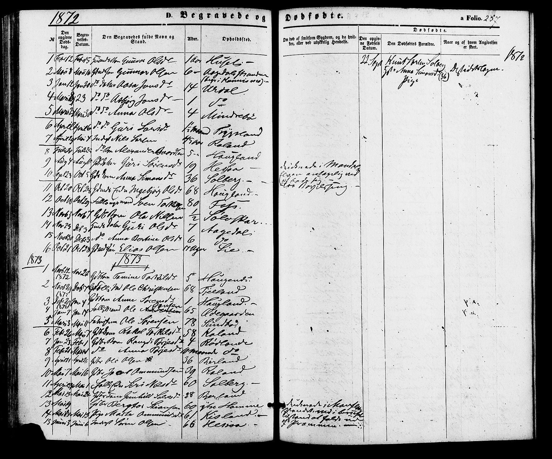 SAK, Bjelland sokneprestkontor, F/Fa/Faa/L0003: Ministerialbok nr. A 3, 1867-1887, s. 257
