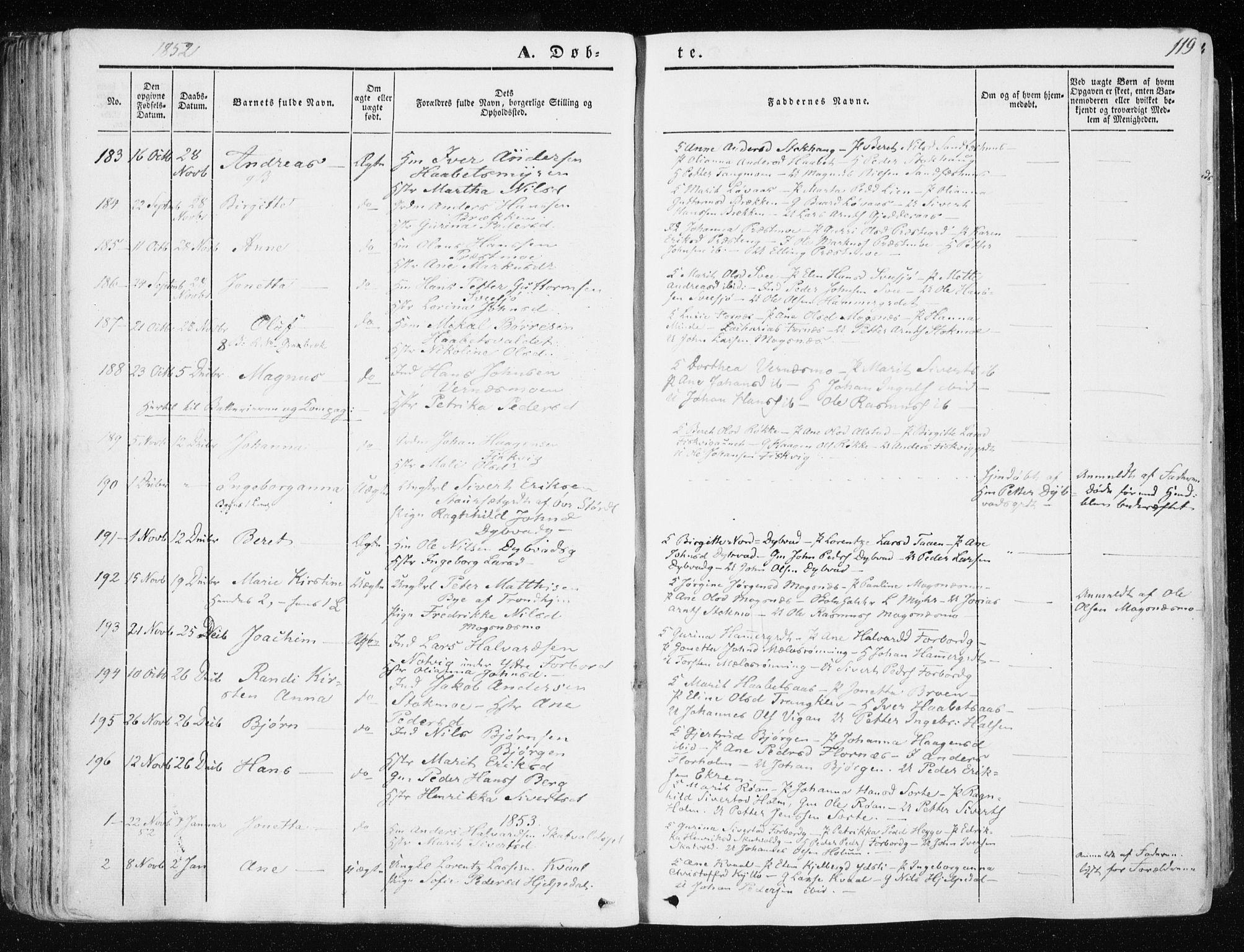 SAT, Ministerialprotokoller, klokkerbøker og fødselsregistre - Nord-Trøndelag, 709/L0074: Ministerialbok nr. 709A14, 1845-1858, s. 119