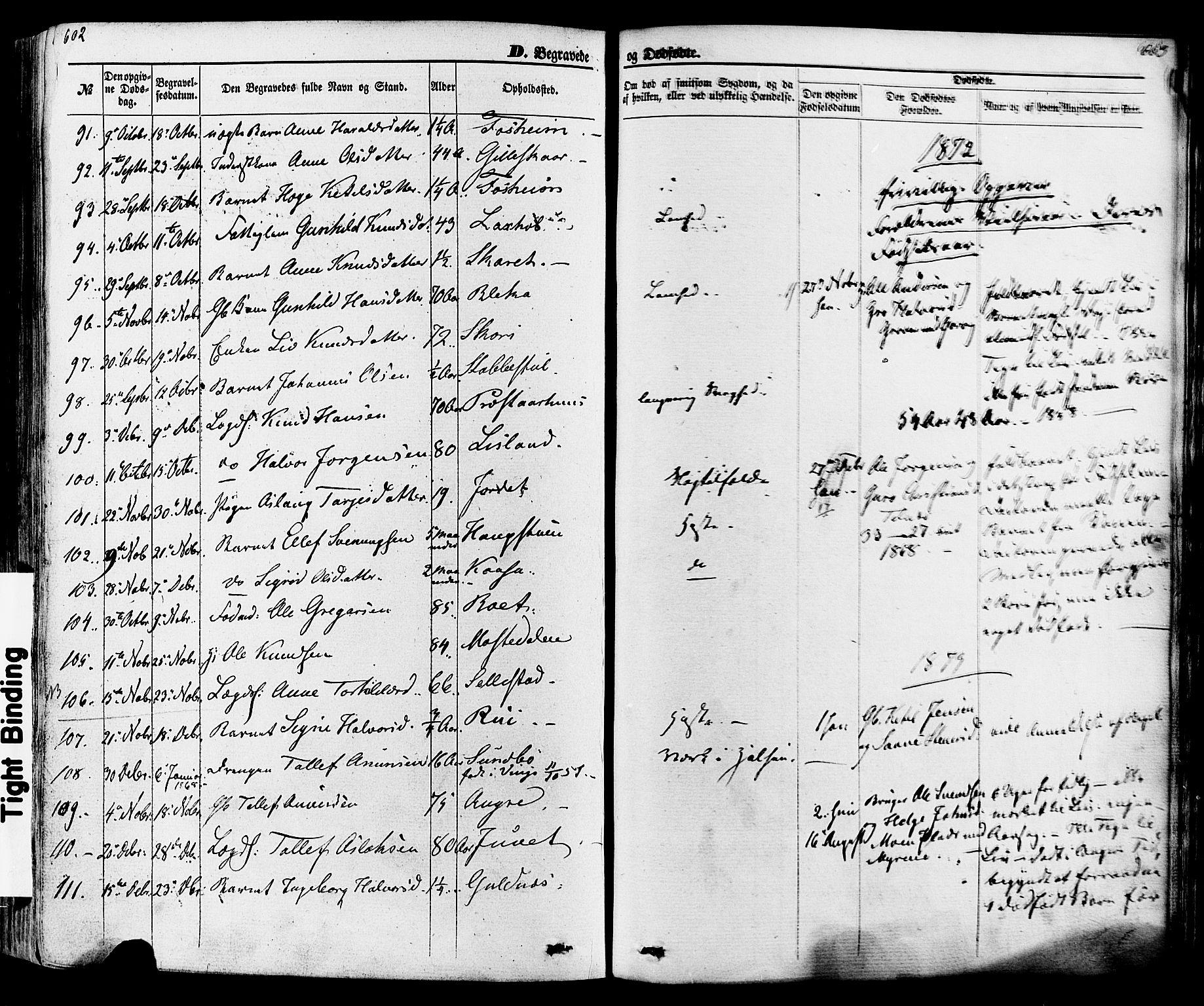 SAKO, Seljord kirkebøker, F/Fa/L0013: Ministerialbok nr. I 13, 1866-1876, s. 602-603