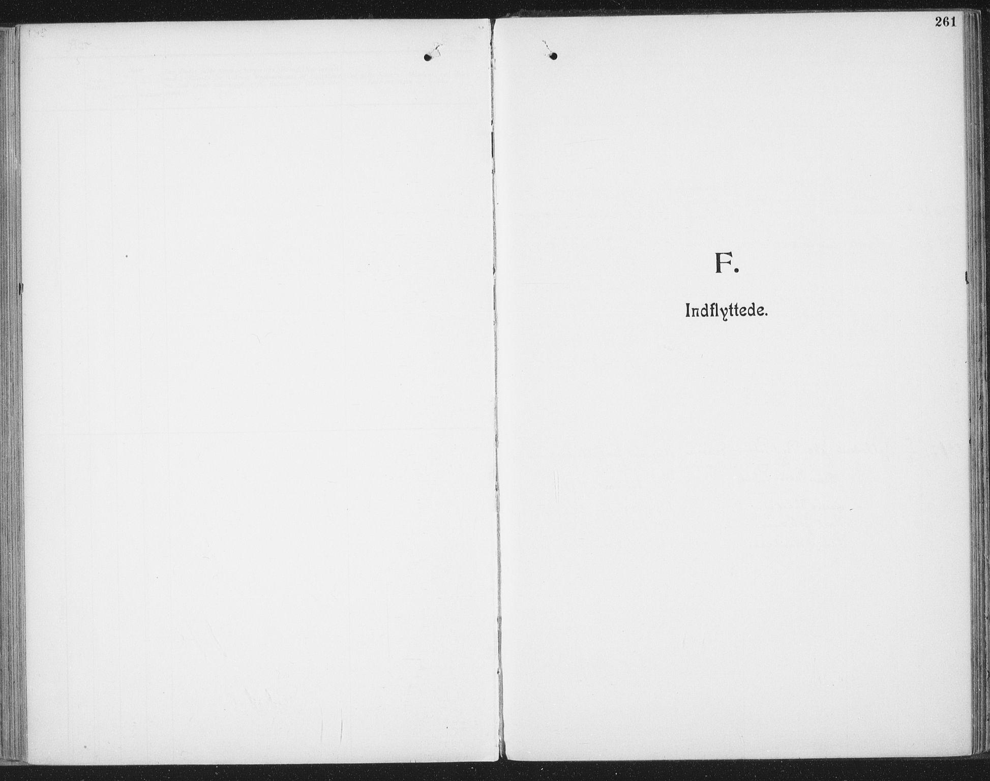 SAT, Ministerialprotokoller, klokkerbøker og fødselsregistre - Nordland, 804/L0081: Ministerialbok nr. 804A02, 1901-1915, s. 261