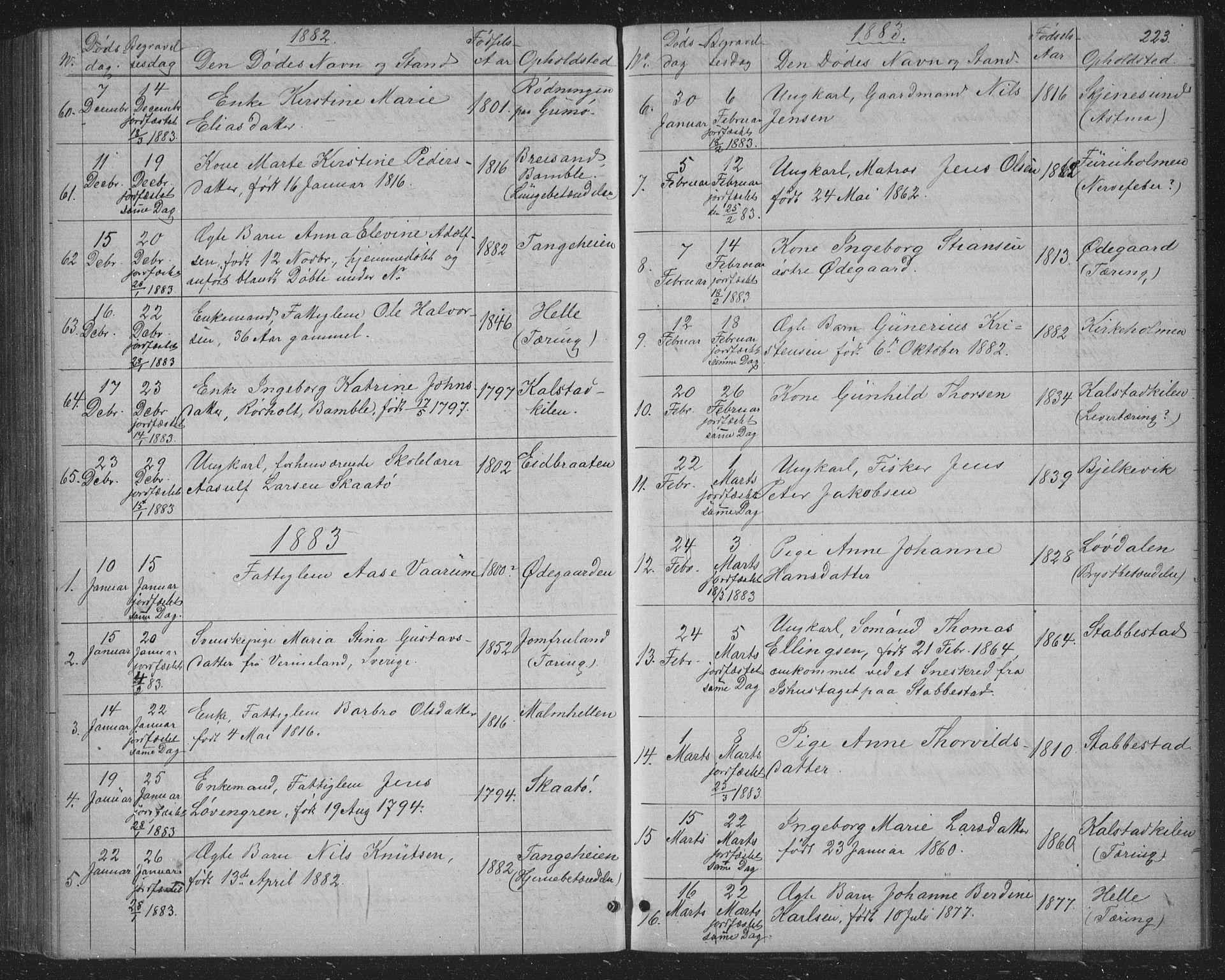 SAKO, Skåtøy kirkebøker, G/Ga/L0002: Klokkerbok nr. I 2, 1872-1884, s. 223