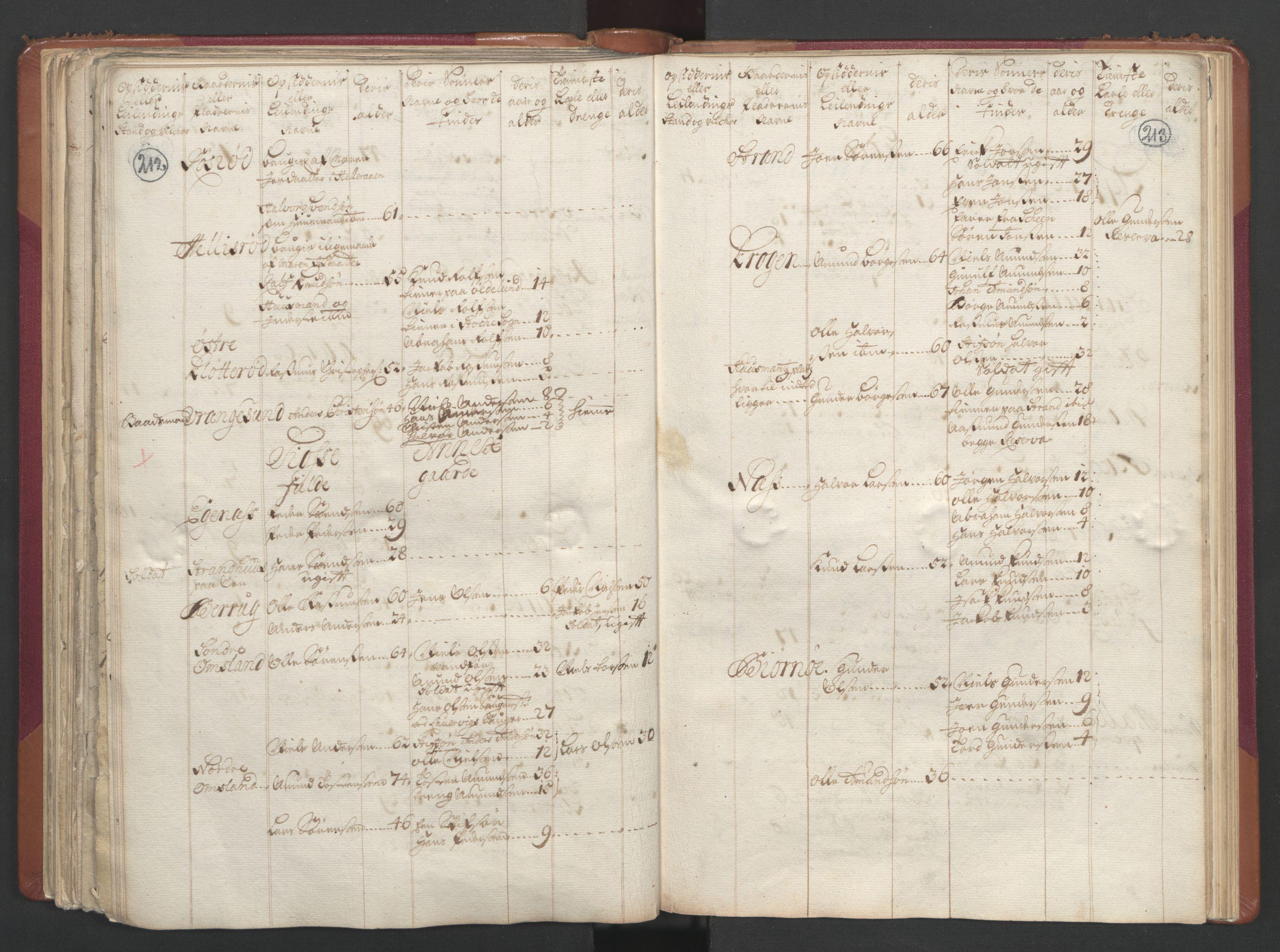 RA, Manntallet 1701, nr. 2: Solør, Odal og Østerdal fogderi og Larvik grevskap, 1701, s. 212-213