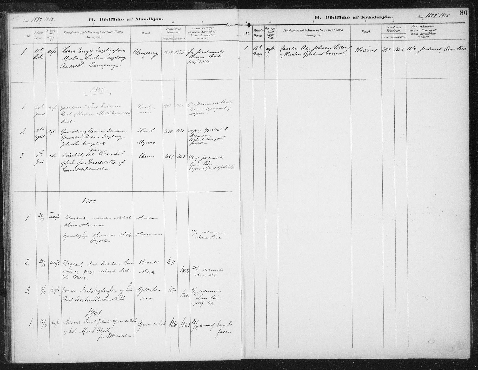 SAT, Ministerialprotokoller, klokkerbøker og fødselsregistre - Sør-Trøndelag, 674/L0872: Ministerialbok nr. 674A04, 1897-1907, s. 80