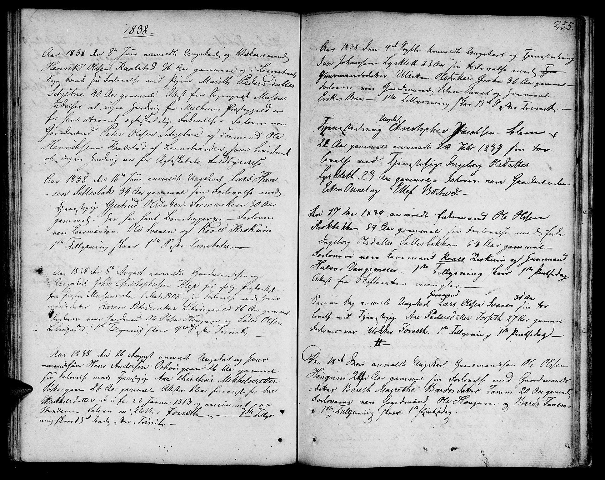 SAT, Ministerialprotokoller, klokkerbøker og fødselsregistre - Sør-Trøndelag, 618/L0438: Ministerialbok nr. 618A03, 1783-1815, s. 255
