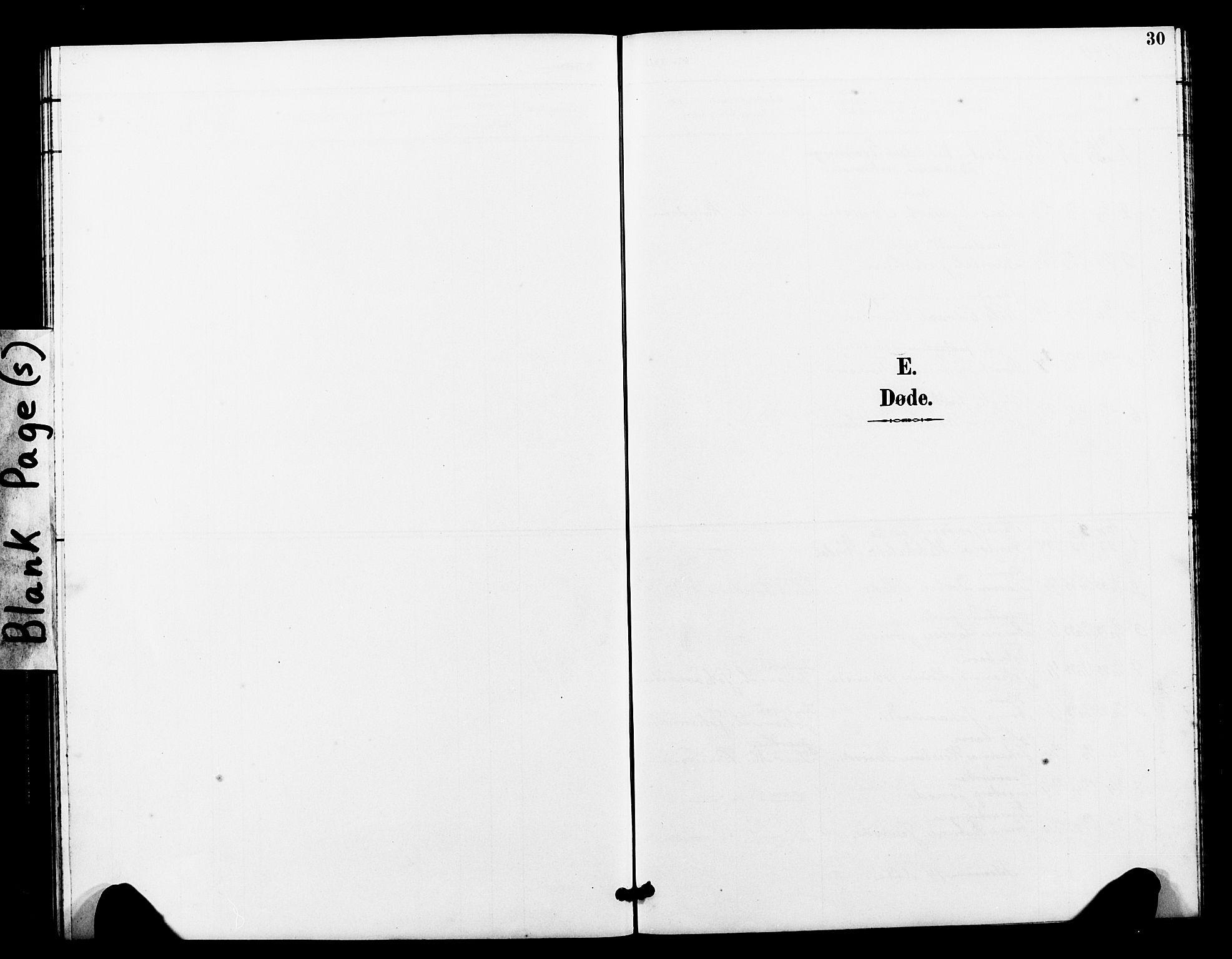 SAT, Ministerialprotokoller, klokkerbøker og fødselsregistre - Sør-Trøndelag, 663/L0762: Klokkerbok nr. 663C02, 1894-1899, s. 30