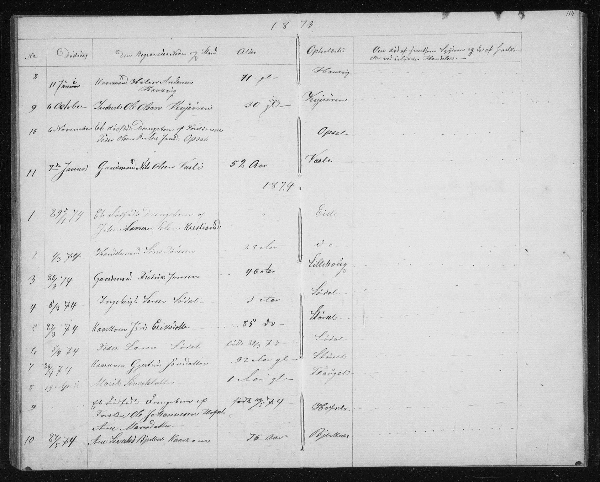 SAT, Ministerialprotokoller, klokkerbøker og fødselsregistre - Sør-Trøndelag, 631/L0513: Klokkerbok nr. 631C01, 1869-1879, s. 114