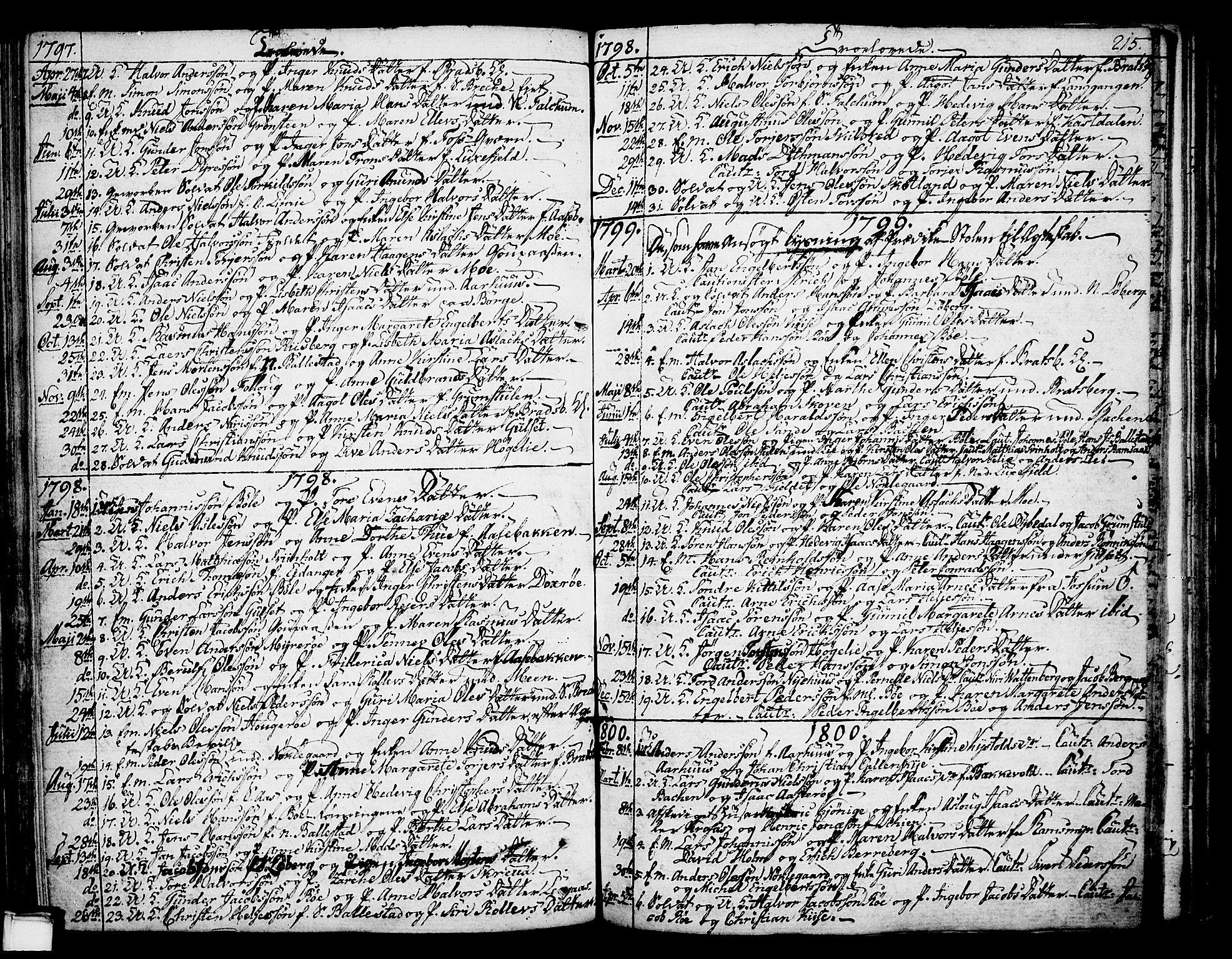 SAKO, Gjerpen kirkebøker, F/Fa/L0003: Ministerialbok nr. 3, 1796-1814, s. 215