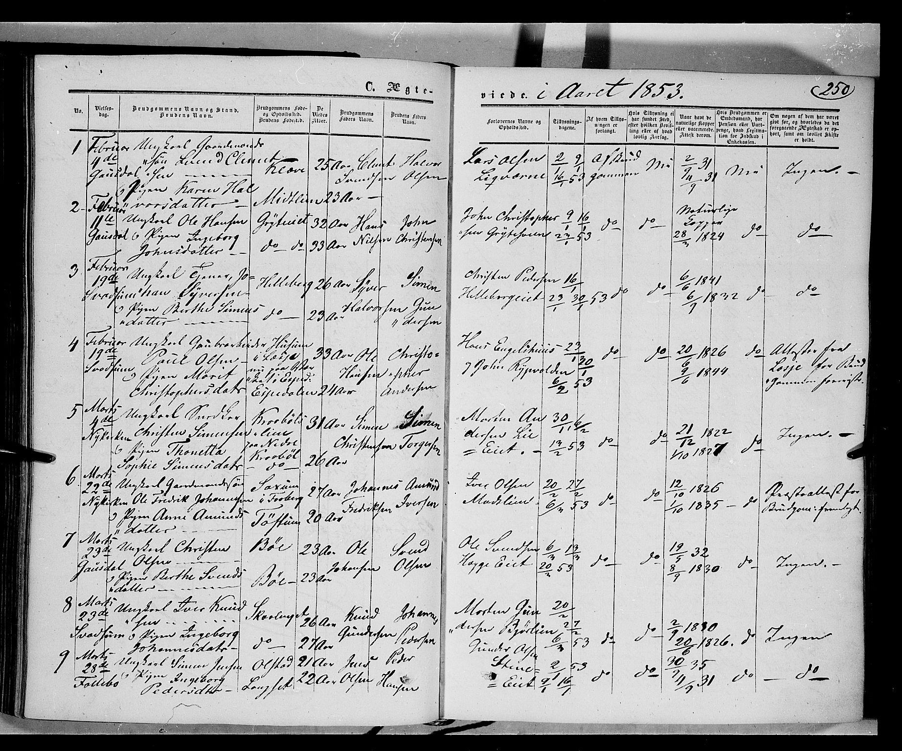 SAH, Gausdal prestekontor, Ministerialbok nr. 8, 1850-1861, s. 250