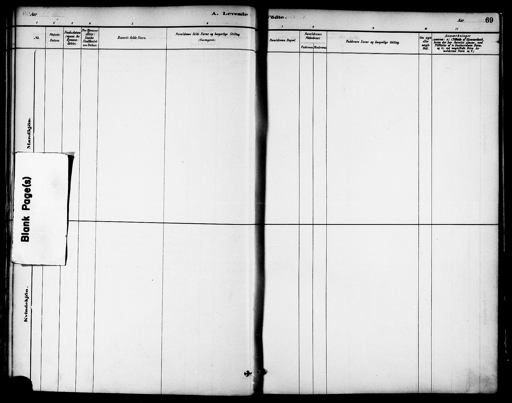 SAT, Ministerialprotokoller, klokkerbøker og fødselsregistre - Nord-Trøndelag, 739/L0371: Ministerialbok nr. 739A03, 1881-1895, s. 69