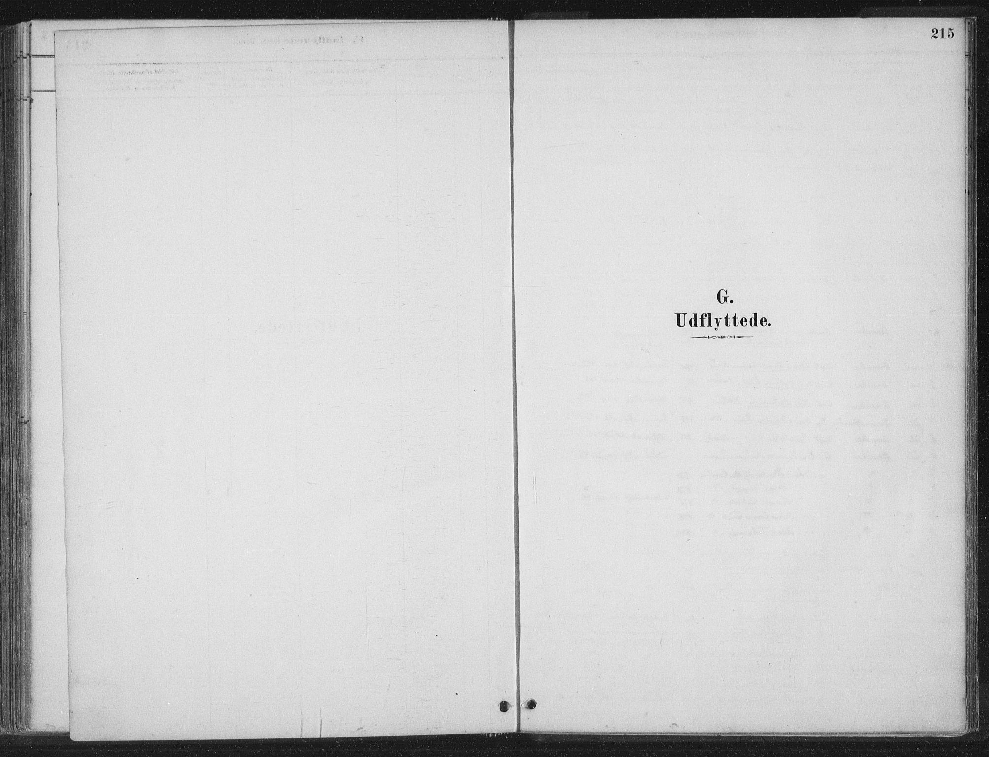 SAT, Ministerialprotokoller, klokkerbøker og fødselsregistre - Nord-Trøndelag, 788/L0697: Ministerialbok nr. 788A04, 1878-1902, s. 215