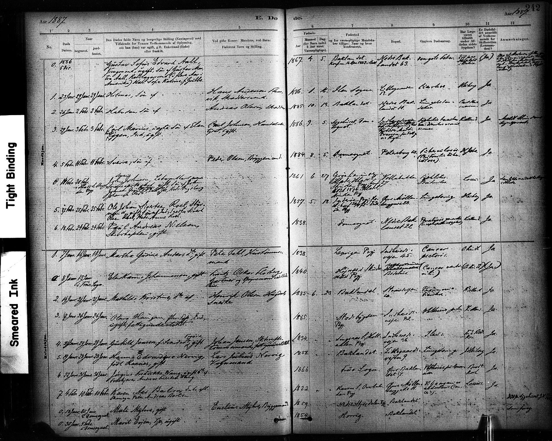 SAT, Ministerialprotokoller, klokkerbøker og fødselsregistre - Sør-Trøndelag, 604/L0189: Ministerialbok nr. 604A10, 1878-1892, s. 242