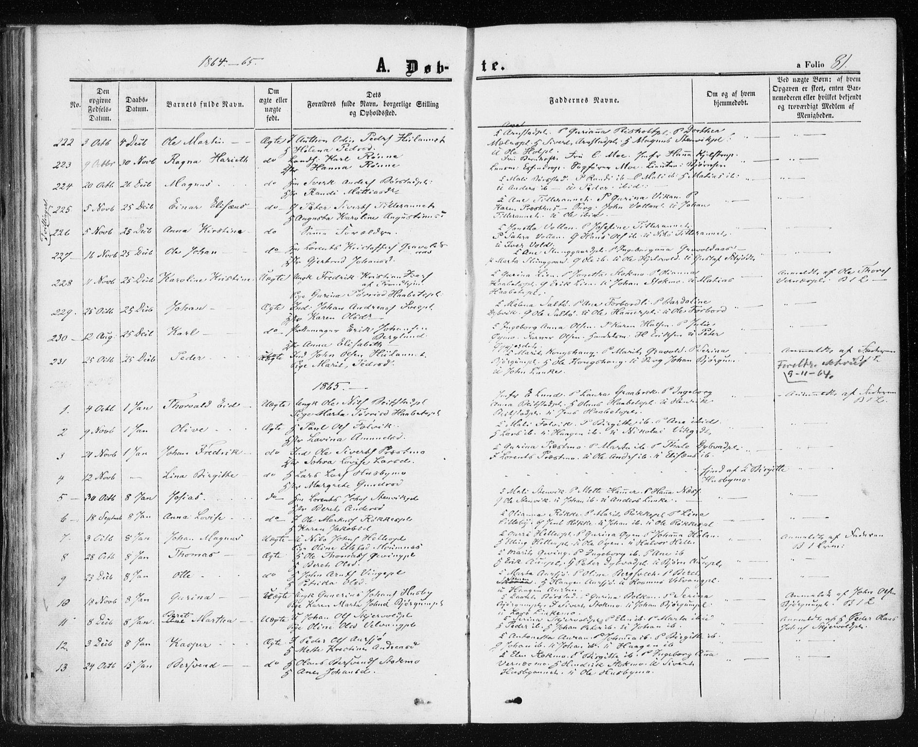 SAT, Ministerialprotokoller, klokkerbøker og fødselsregistre - Nord-Trøndelag, 709/L0075: Ministerialbok nr. 709A15, 1859-1870, s. 81
