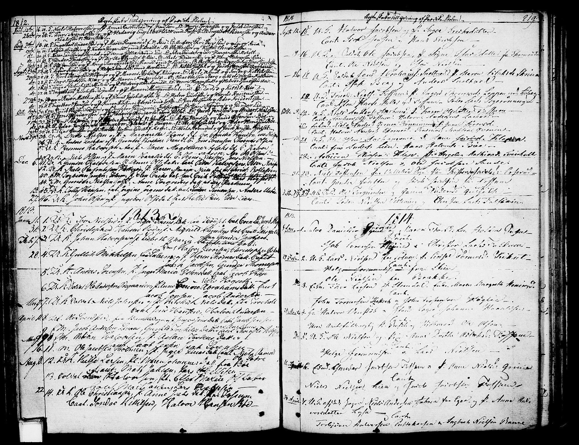 SAKO, Gjerpen kirkebøker, F/Fa/L0003: Ministerialbok nr. 3, 1796-1814, s. 219