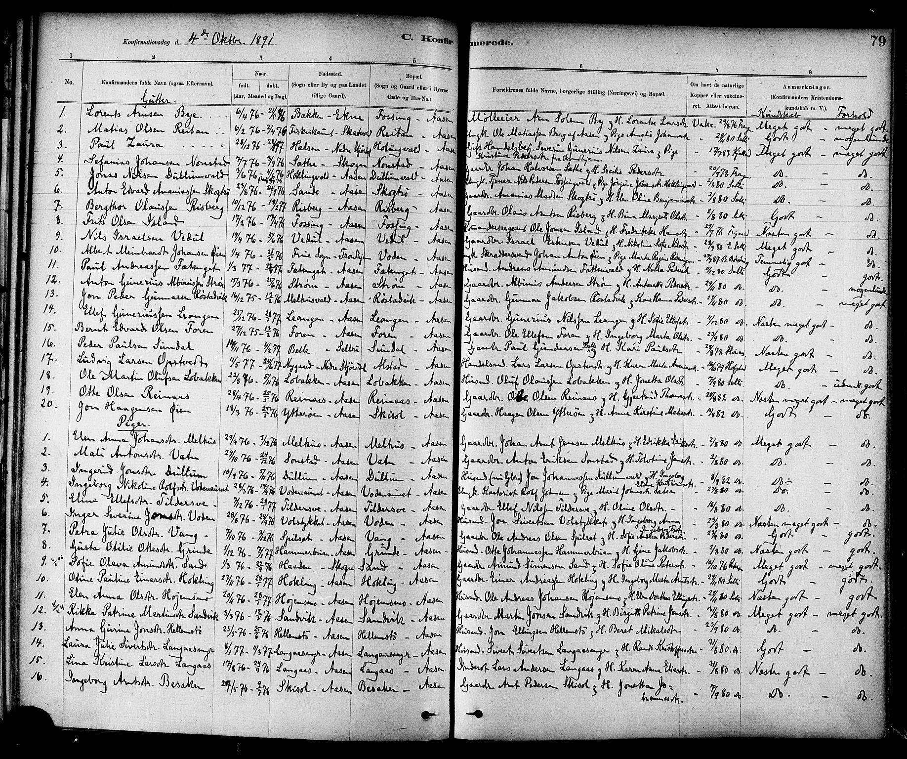 SAT, Ministerialprotokoller, klokkerbøker og fødselsregistre - Nord-Trøndelag, 714/L0130: Ministerialbok nr. 714A01, 1878-1895, s. 79