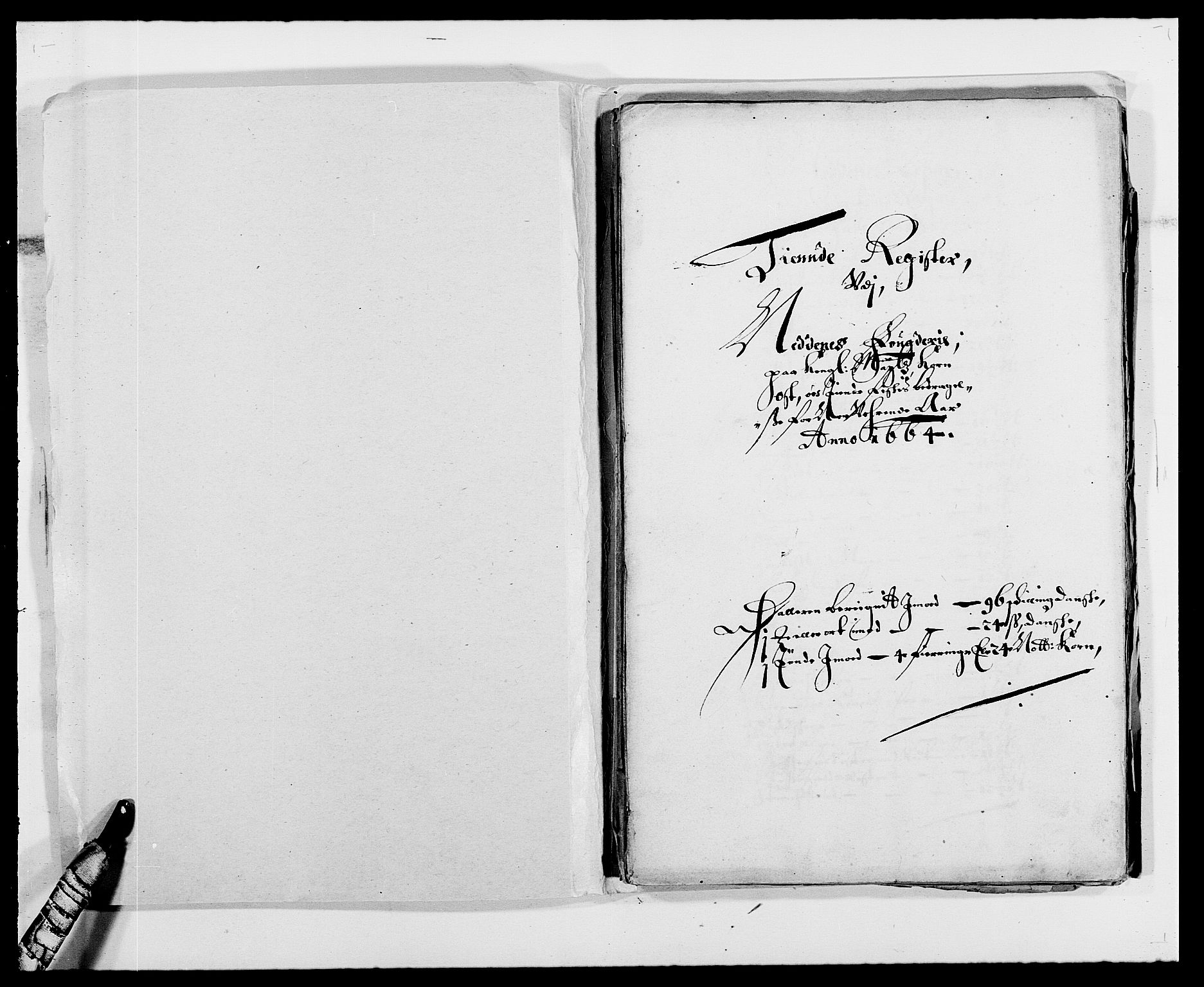 RA, Rentekammeret inntil 1814, Reviderte regnskaper, Fogderegnskap, R39/L2296: Fogderegnskap Nedenes, 1664-1666, s. 254