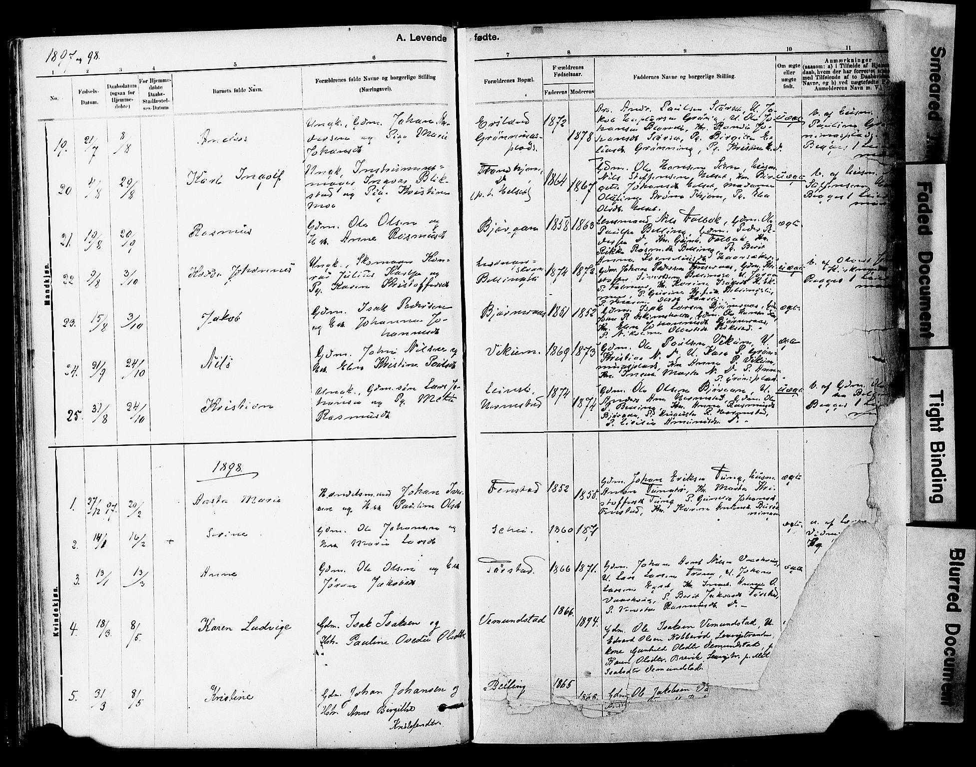 SAT, Ministerialprotokoller, klokkerbøker og fødselsregistre - Sør-Trøndelag, 646/L0615: Ministerialbok nr. 646A13, 1885-1900, s. 54