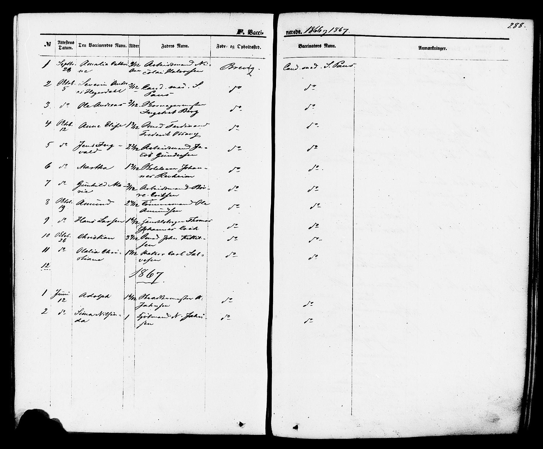 SAKO, Brevik kirkebøker, F/Fa/L0006: Ministerialbok nr. 6, 1866-1881, s. 288
