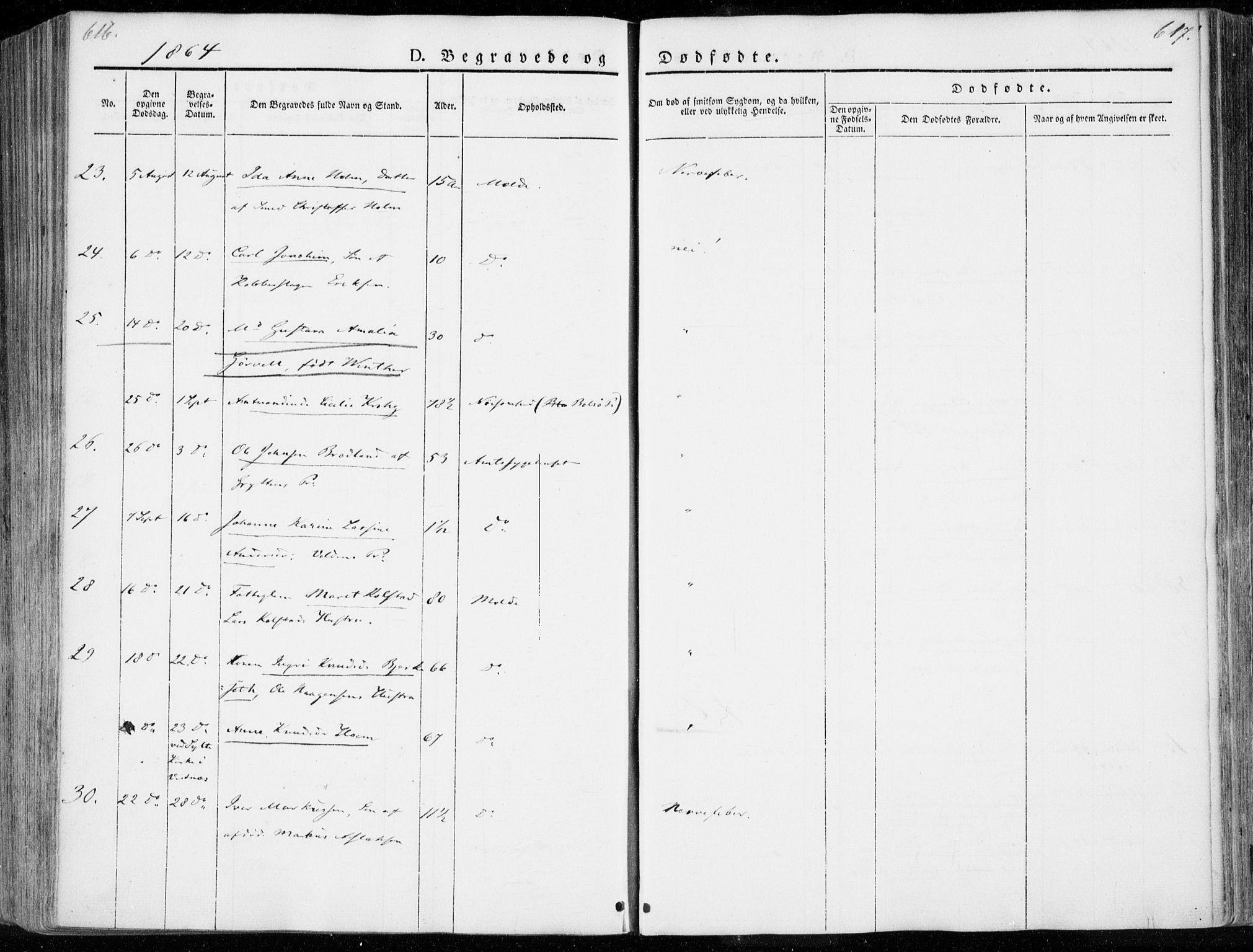 SAT, Ministerialprotokoller, klokkerbøker og fødselsregistre - Møre og Romsdal, 558/L0689: Ministerialbok nr. 558A03, 1843-1872, s. 616-617