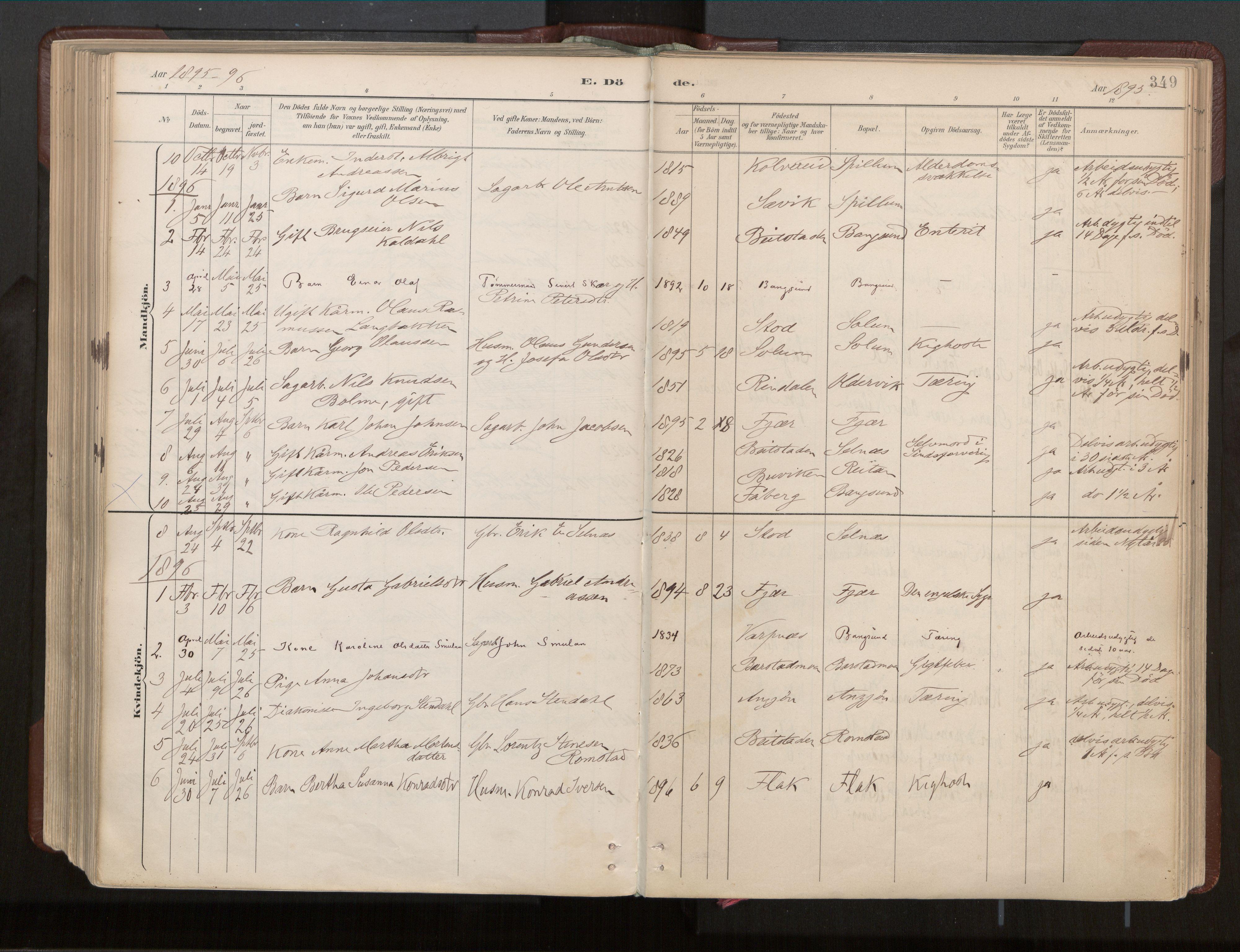 SAT, Ministerialprotokoller, klokkerbøker og fødselsregistre - Nord-Trøndelag, 770/L0589: Ministerialbok nr. 770A03, 1887-1929, s. 349