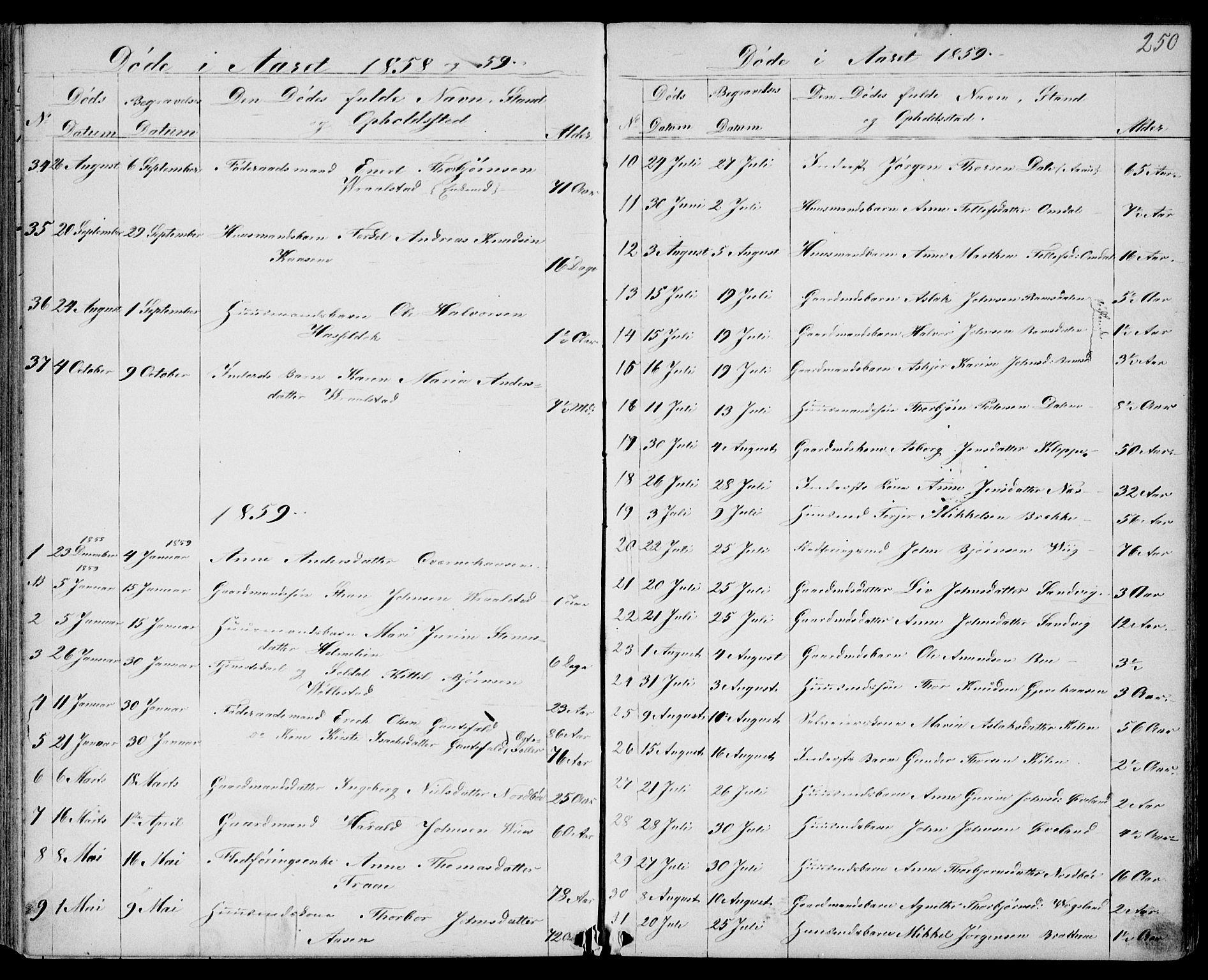 SAKO, Drangedal kirkebøker, G/Gb/L0001: Klokkerbok nr. II 1, 1856-1894, s. 250