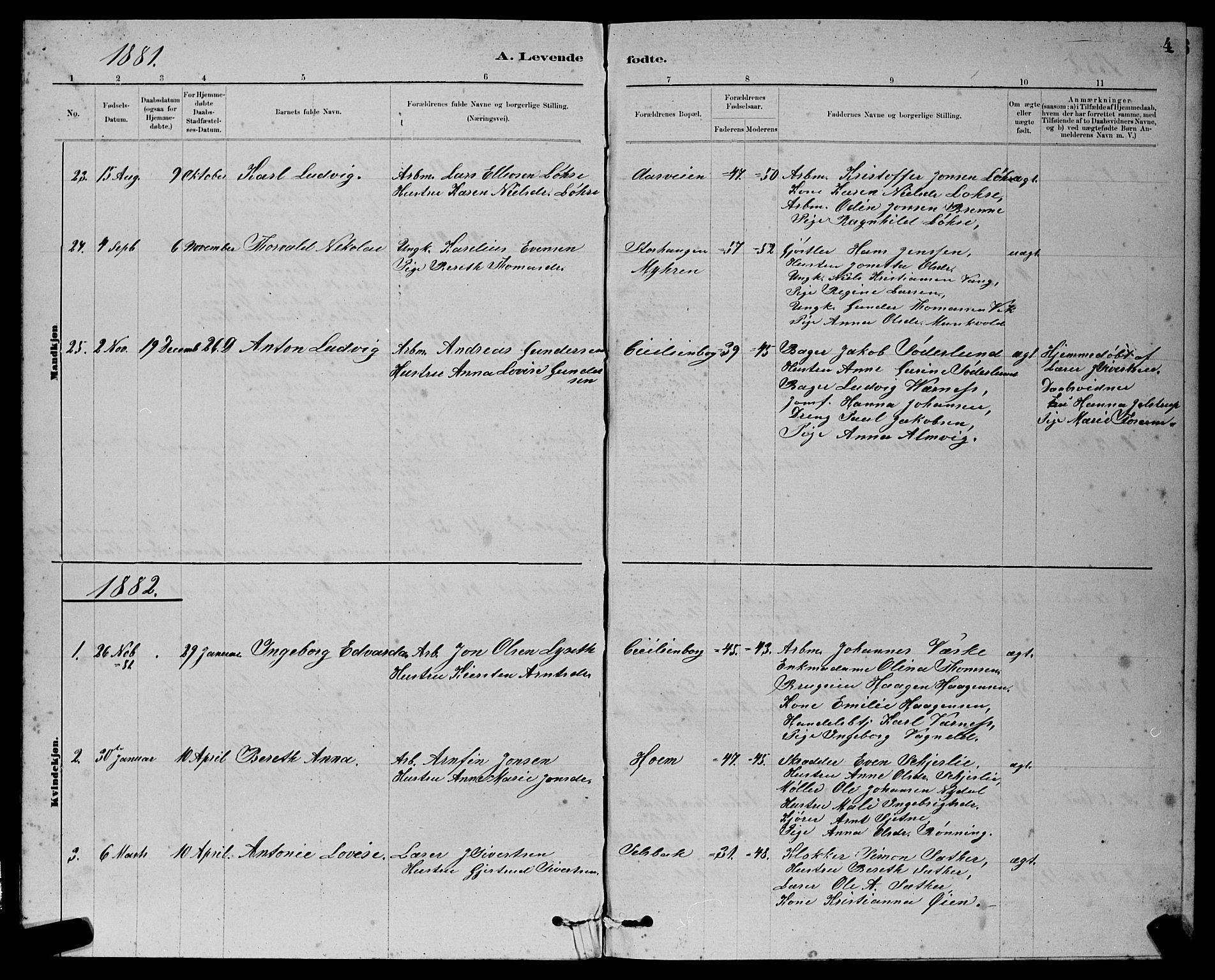 SAT, Ministerialprotokoller, klokkerbøker og fødselsregistre - Sør-Trøndelag, 611/L0354: Klokkerbok nr. 611C02, 1881-1896, s. 4