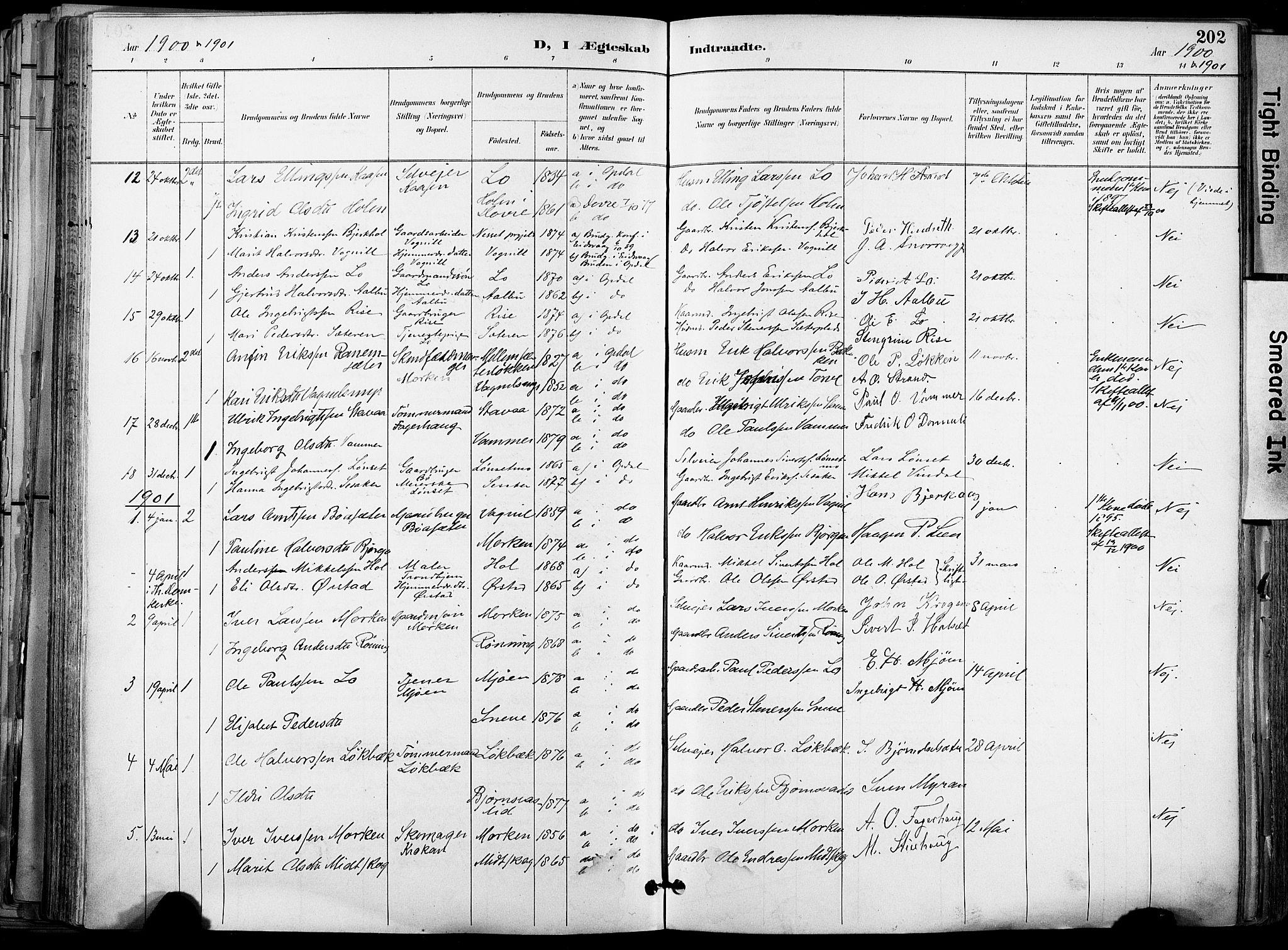 SAT, Ministerialprotokoller, klokkerbøker og fødselsregistre - Sør-Trøndelag, 678/L0902: Ministerialbok nr. 678A11, 1895-1911, s. 202