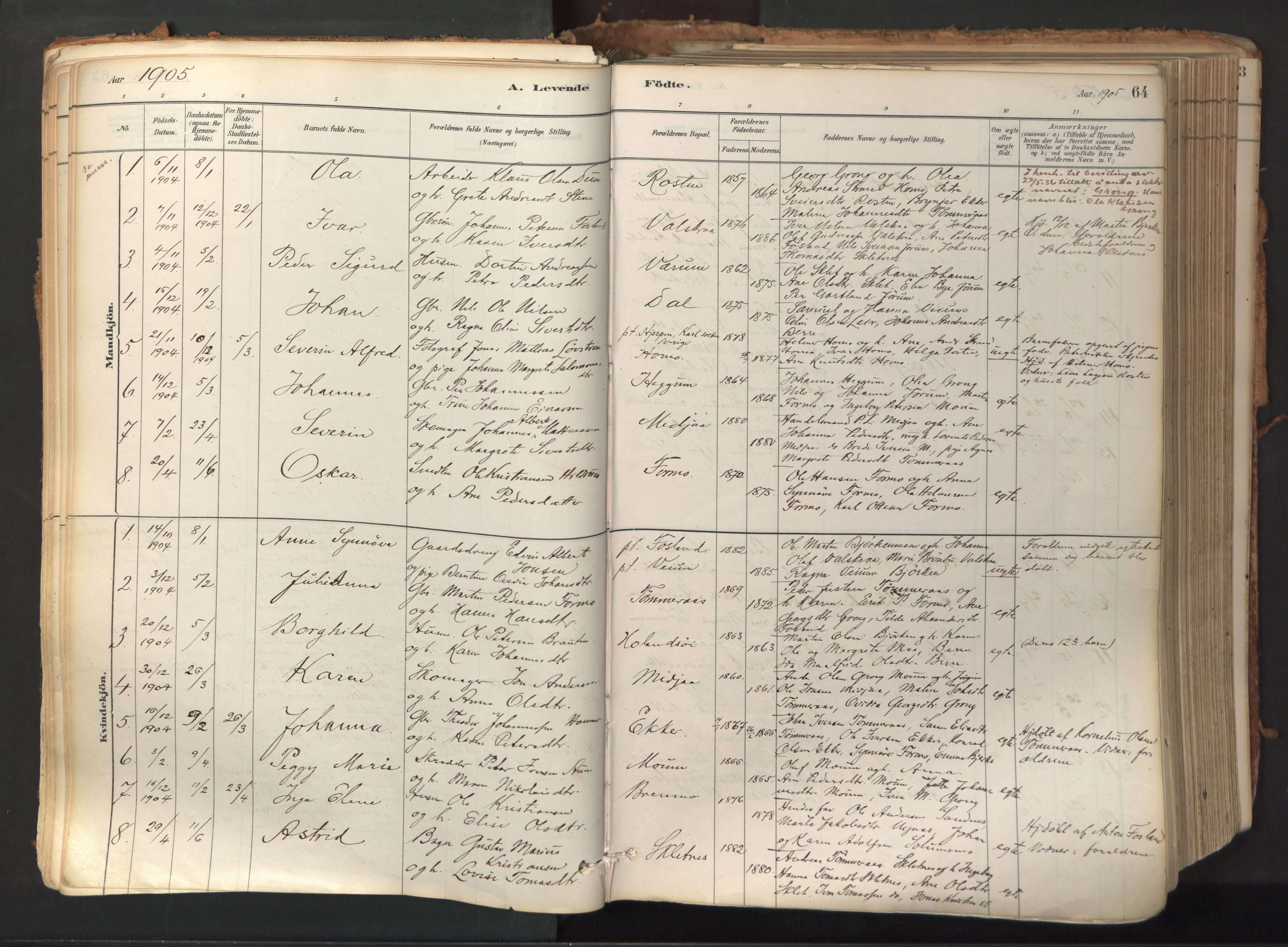 SAT, Ministerialprotokoller, klokkerbøker og fødselsregistre - Nord-Trøndelag, 758/L0519: Ministerialbok nr. 758A04, 1880-1926, s. 64
