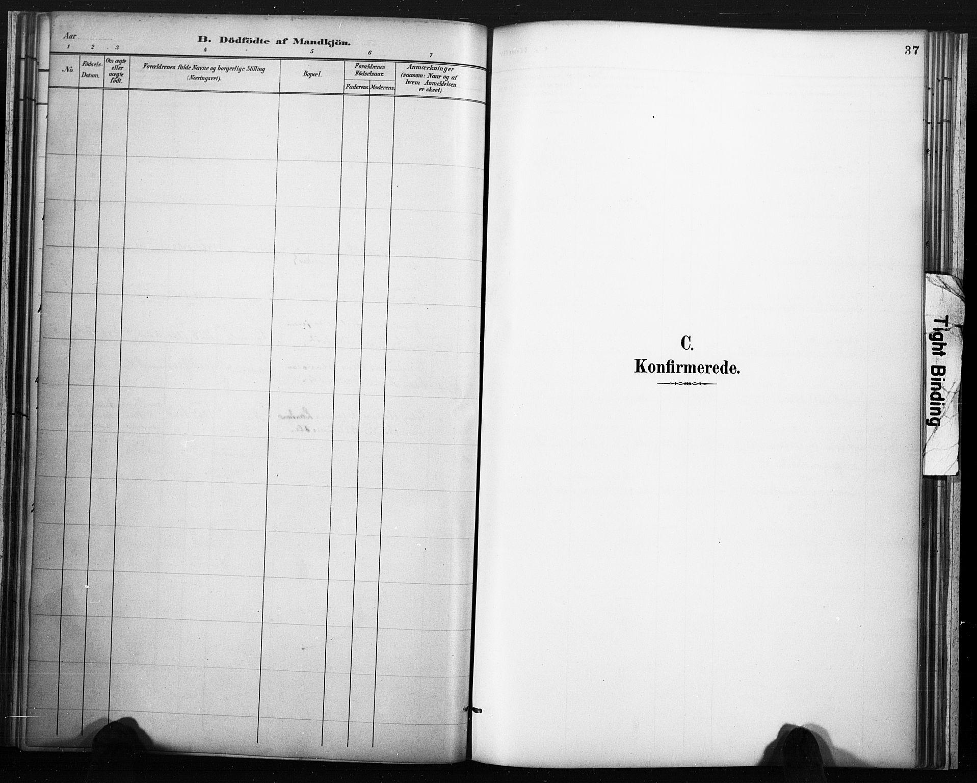 SAKO, Lårdal kirkebøker, F/Fc/L0002: Ministerialbok nr. III 2, 1887-1906, s. 37