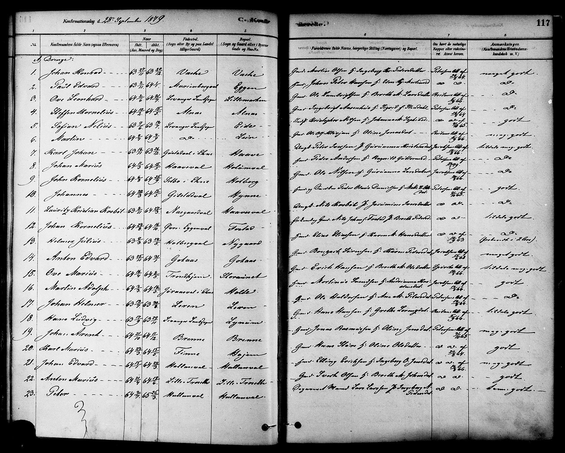 SAT, Ministerialprotokoller, klokkerbøker og fødselsregistre - Nord-Trøndelag, 717/L0159: Ministerialbok nr. 717A09, 1878-1898, s. 117