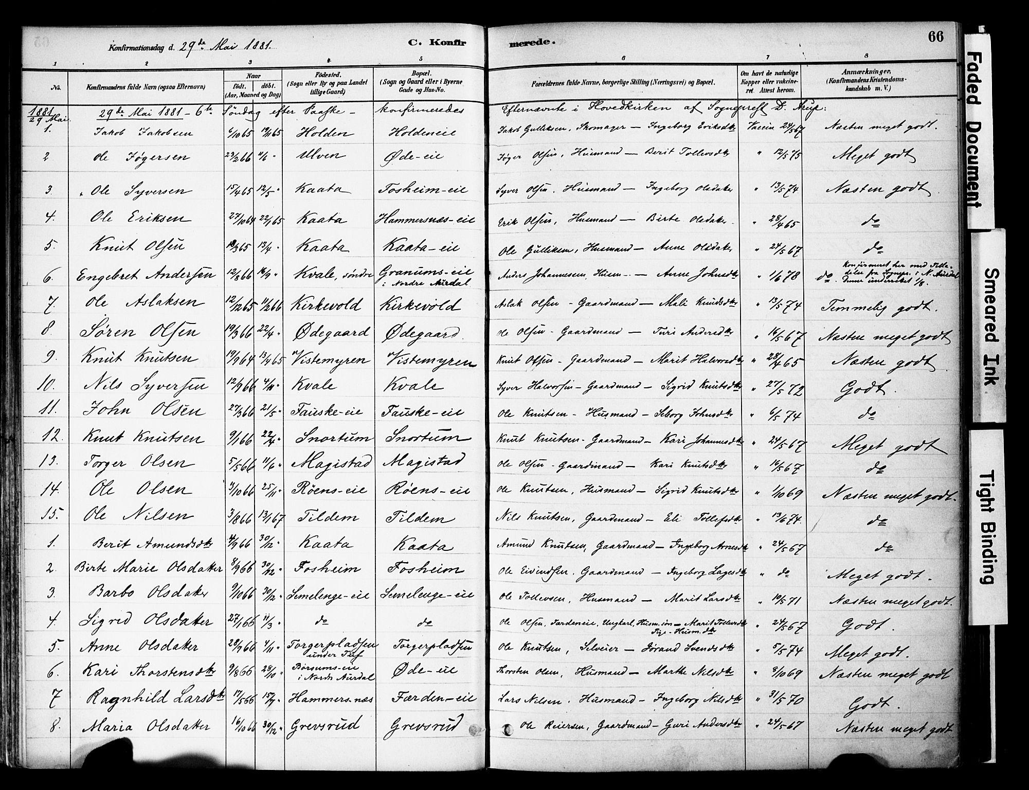 SAH, Vestre Slidre prestekontor, Ministerialbok nr. 6, 1881-1912, s. 66